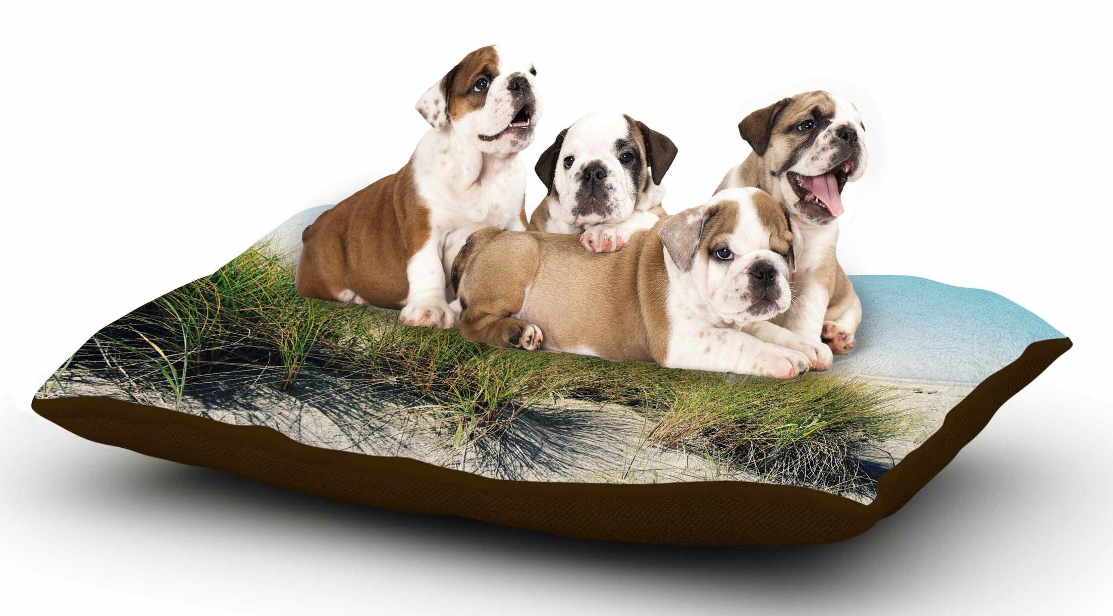 Sylvia Cook 'Dune Grass' Coastal Photography Dog Pillow with Fleece Cozy Top