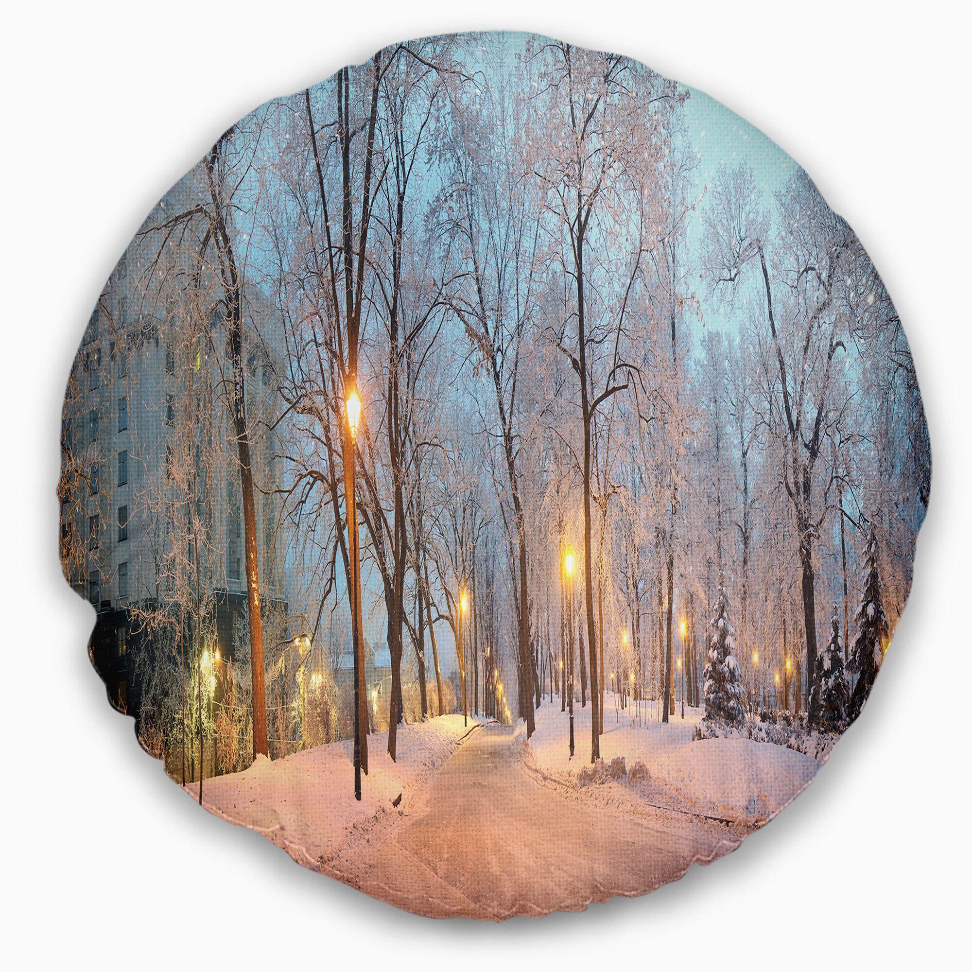 Landscape Photography Mariinsky Garden Panoramic View Throw Pillow
