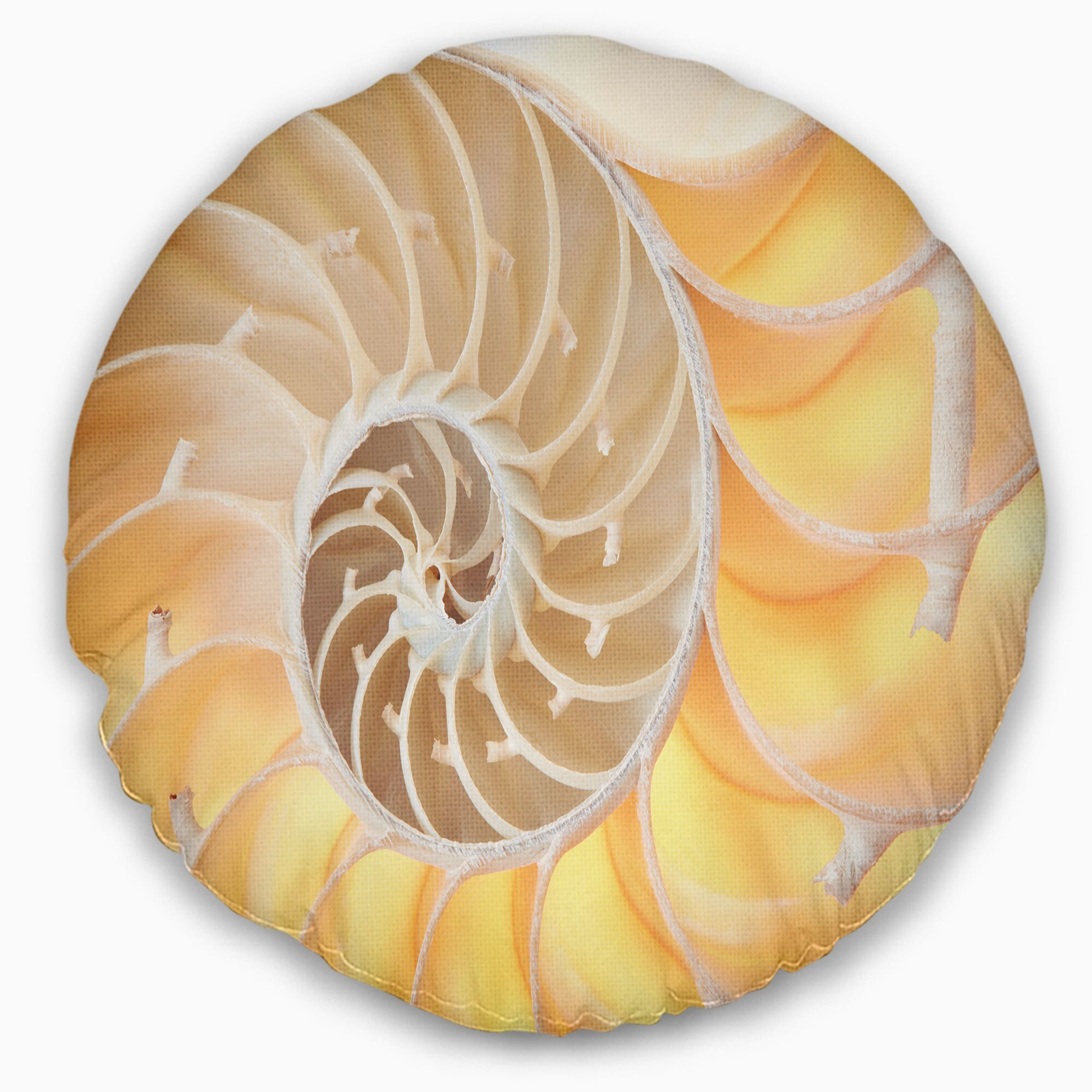 Nautilus Shell Pattern Throw Pillow Size: 16