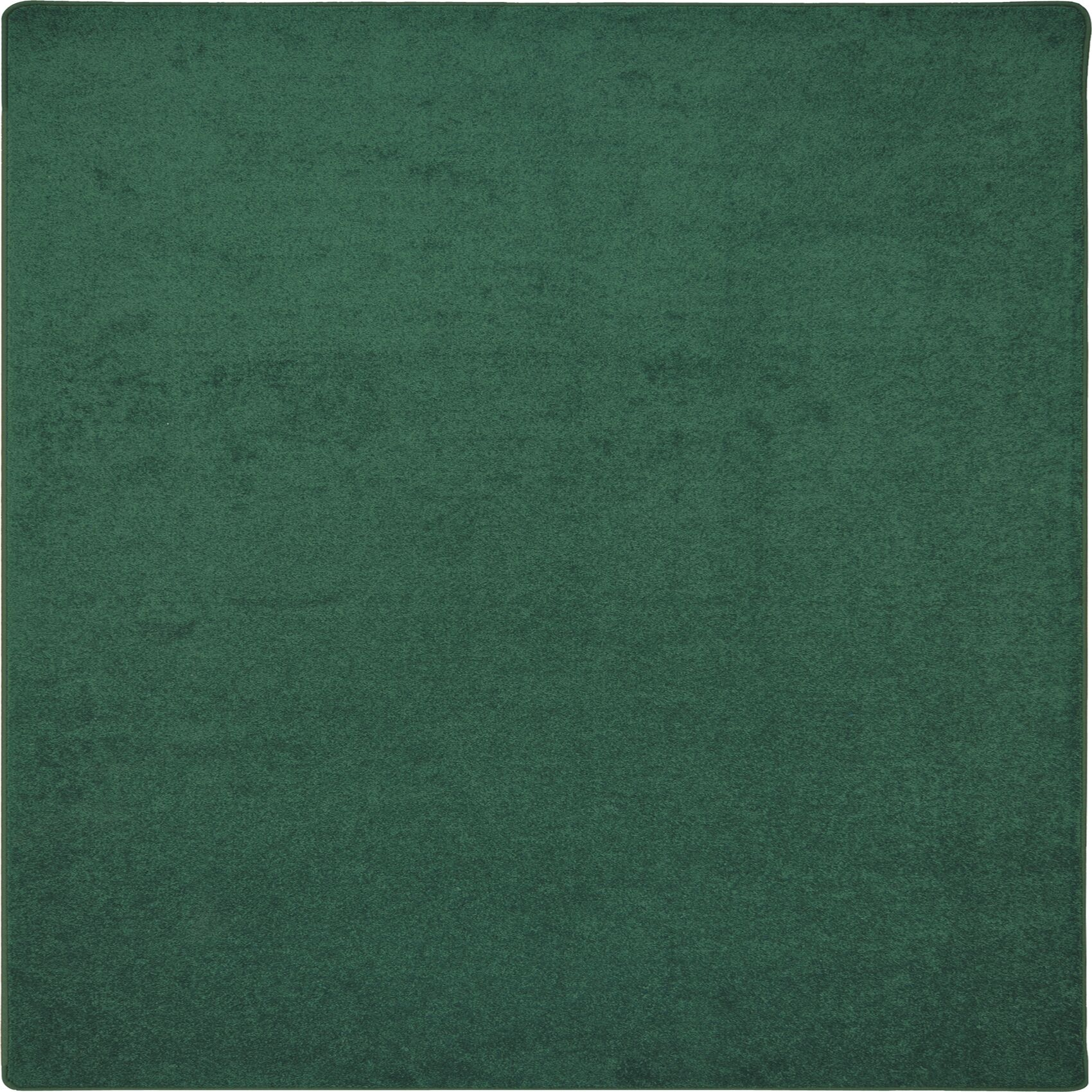 Green Area Rug Rug Size: Square 12'
