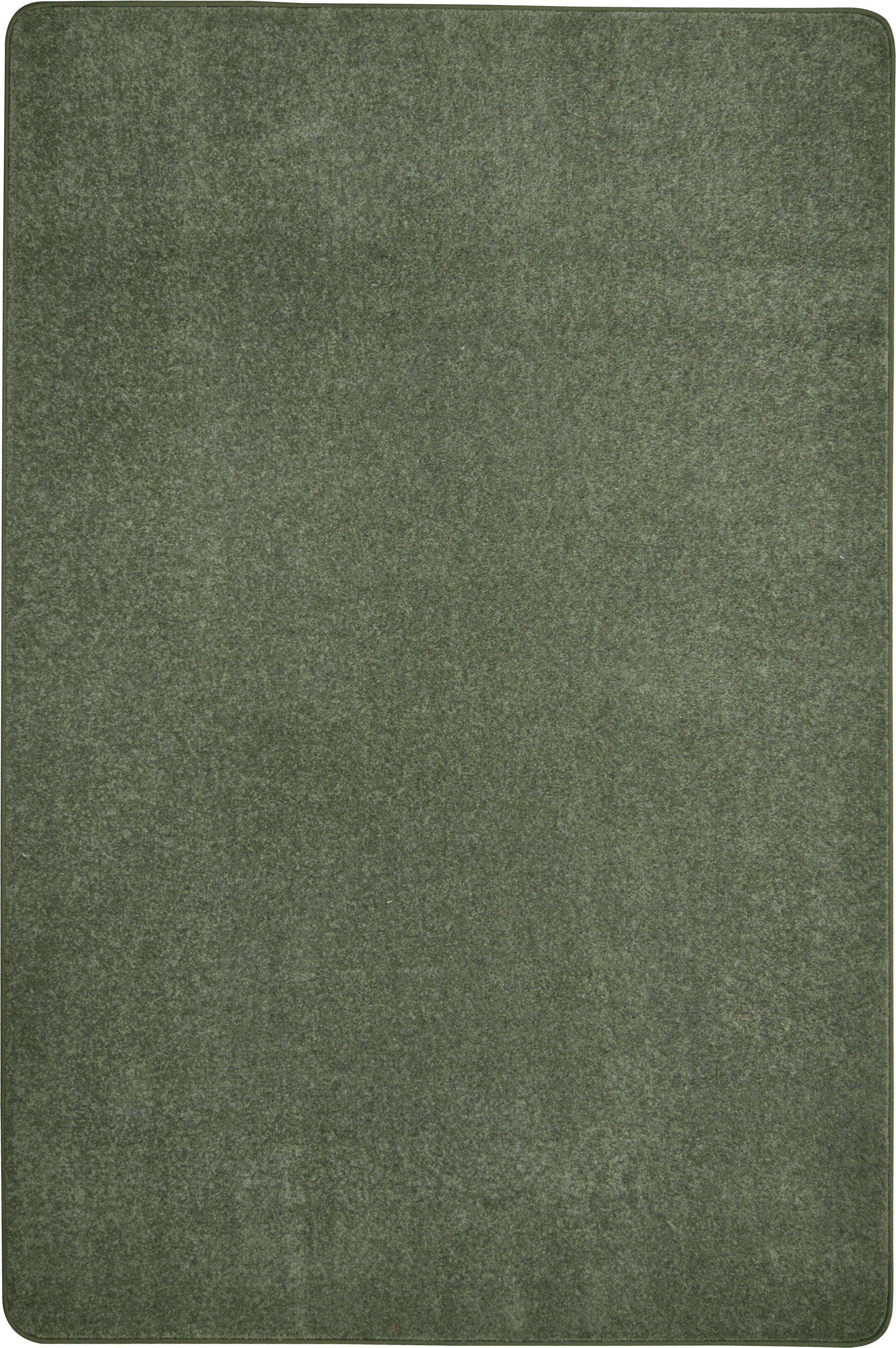 Endurance Green Area Rug Rug Size: Rectangle 12' x 12'