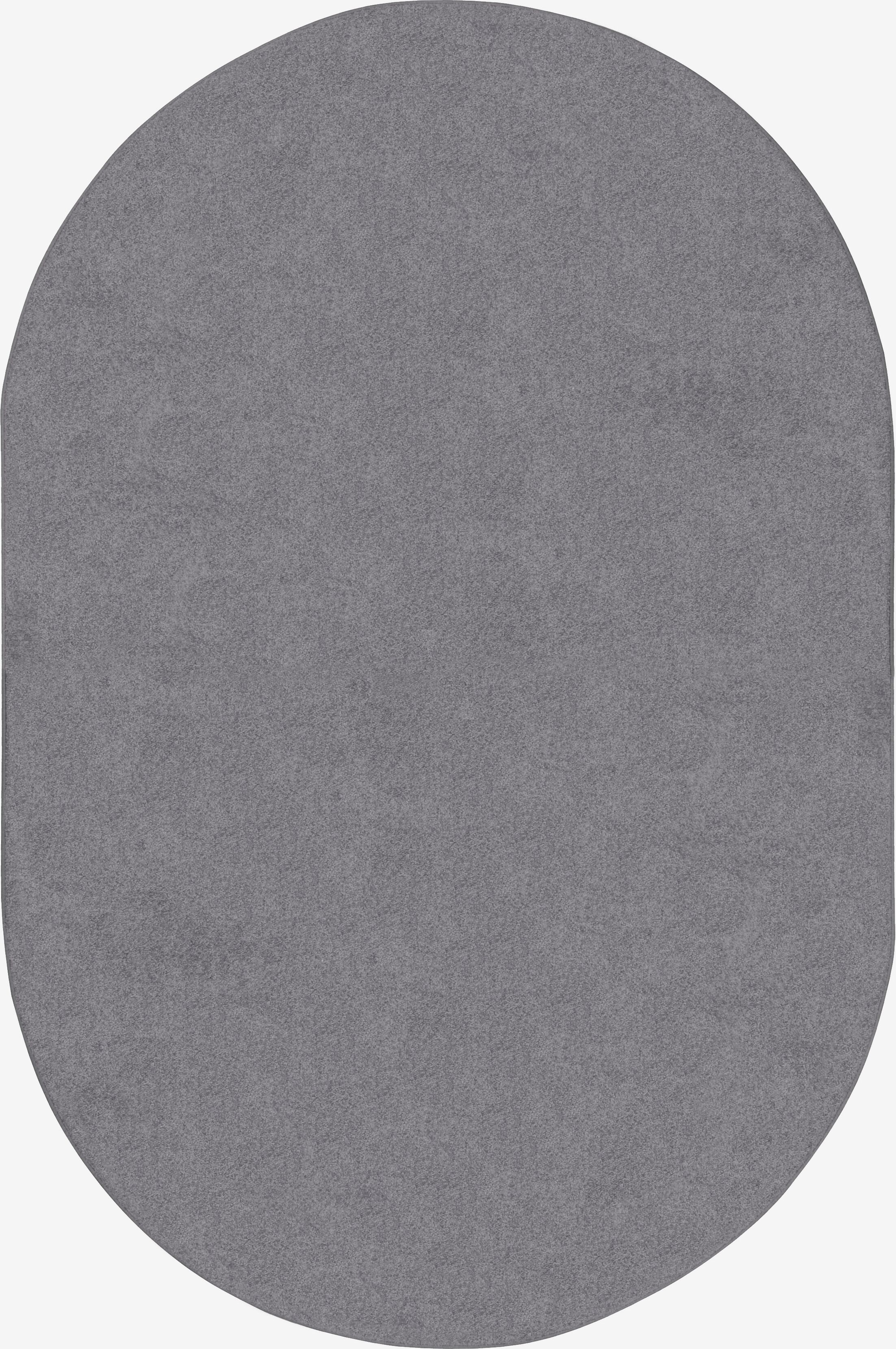 Endurance Silver Area Rug Rug Size: Rectangle 6' x 9'