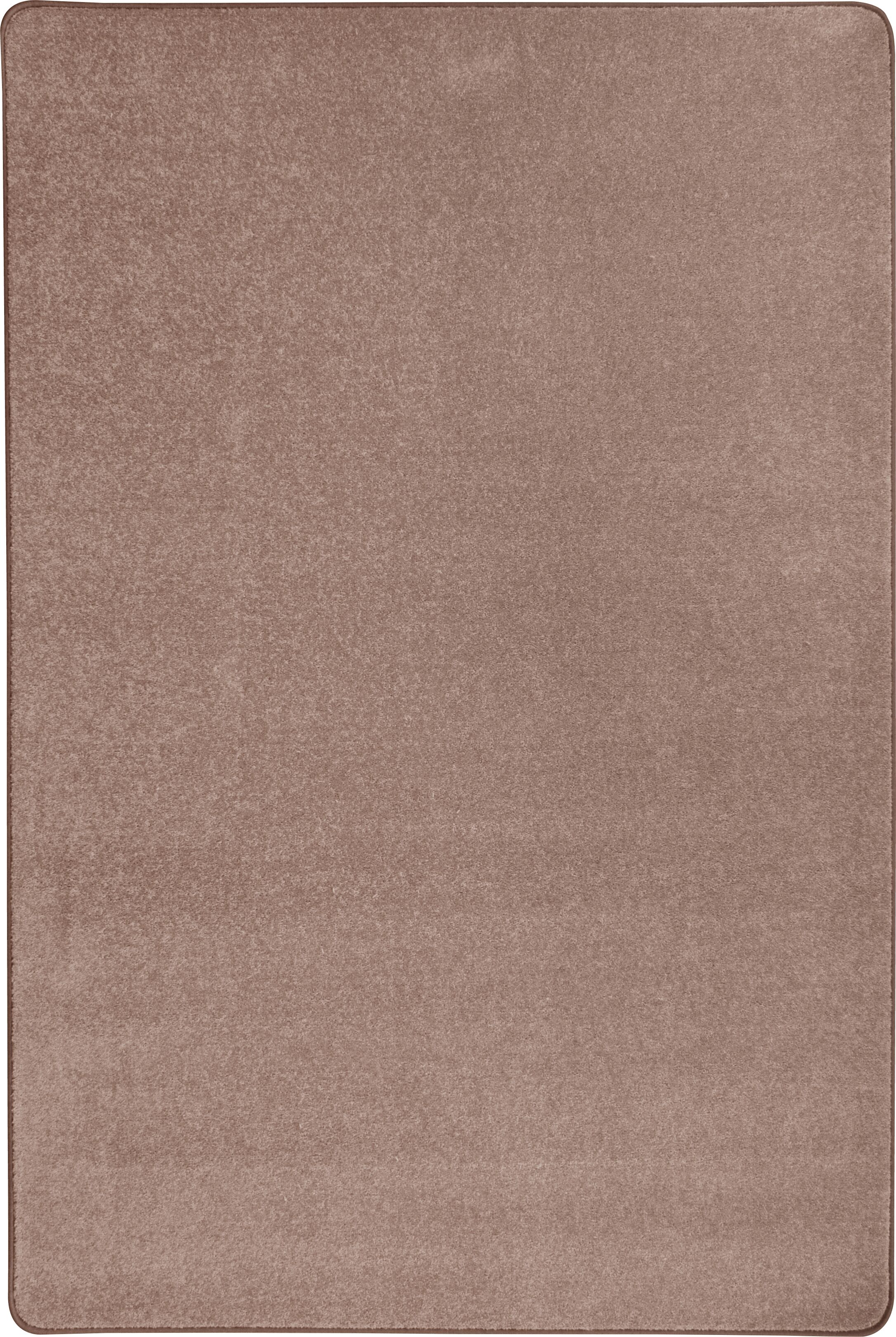 Taupe Area Rug Rug Size: Rectangle 8' x 12'