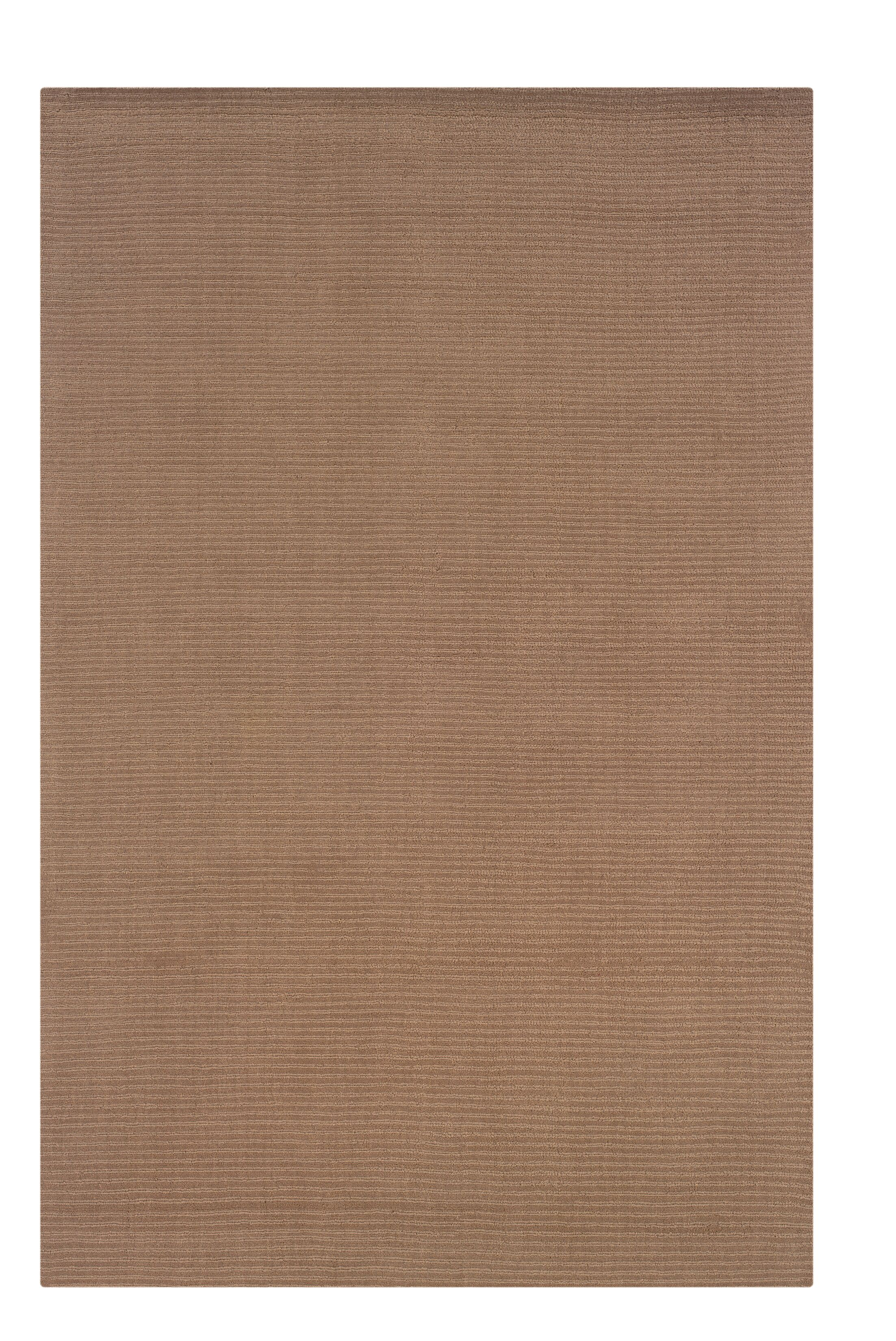 Hand-Woven Brown Area Rug Rug Size: Rectangle 8' x 10'1