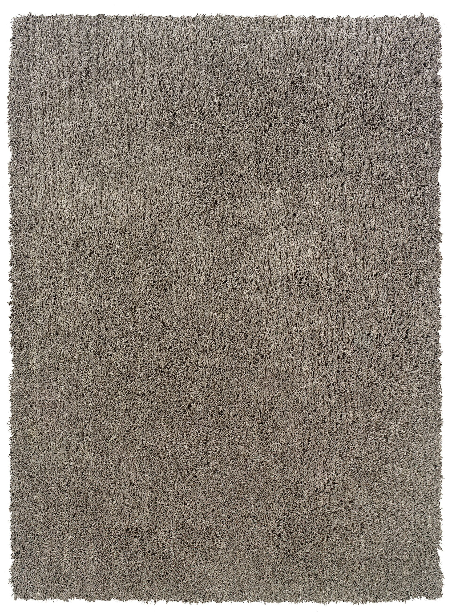 Hand-Woven Gray Area Rug Rug Size: Rectangle 8' x 10'