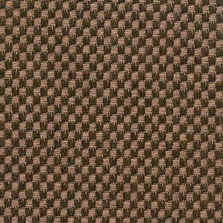 Teak Area Rug Rug Size: Rectangle 5' x 8'