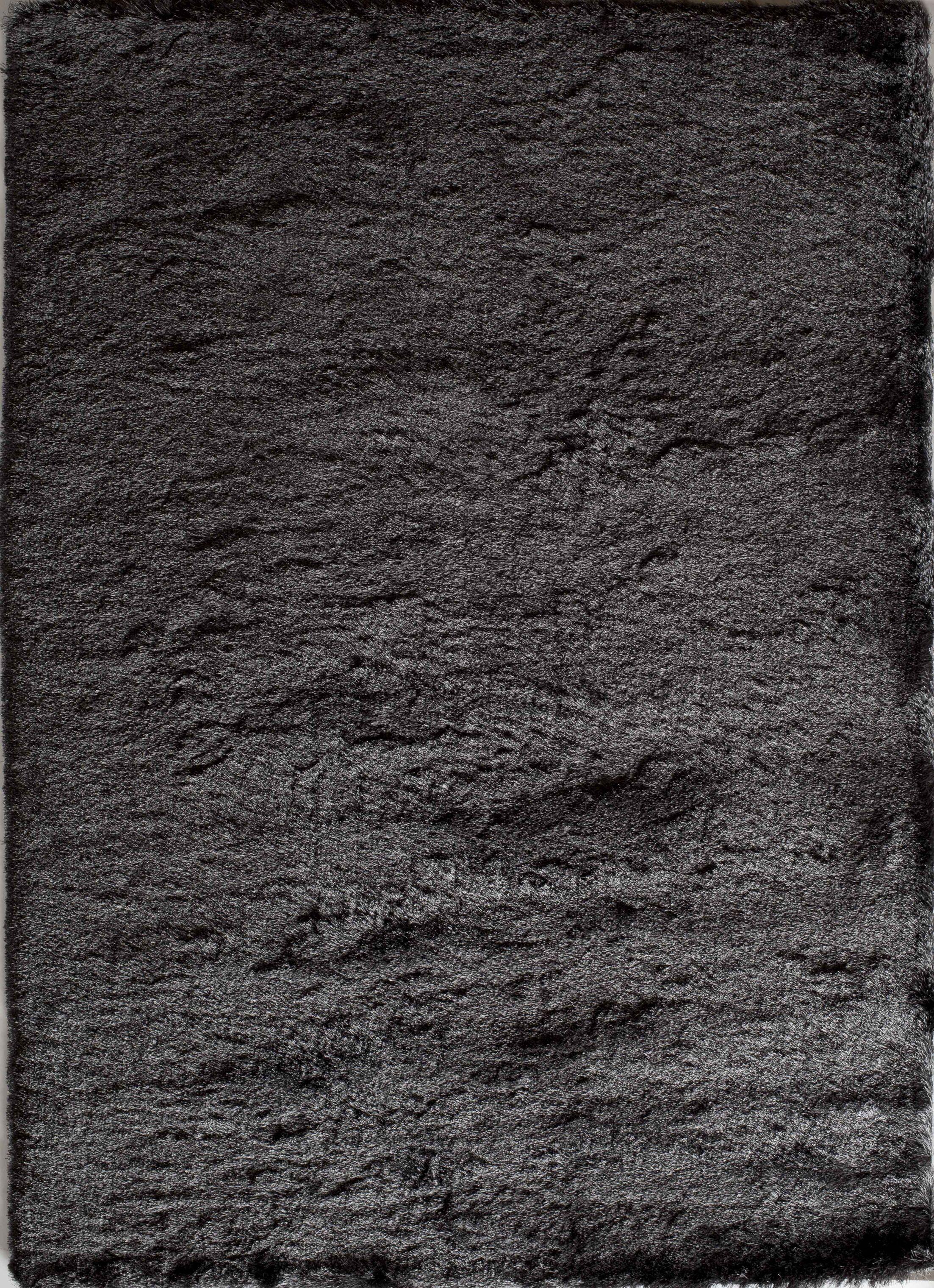 Gray Area Rug Rug Size: Rectangle 7' x 9'
