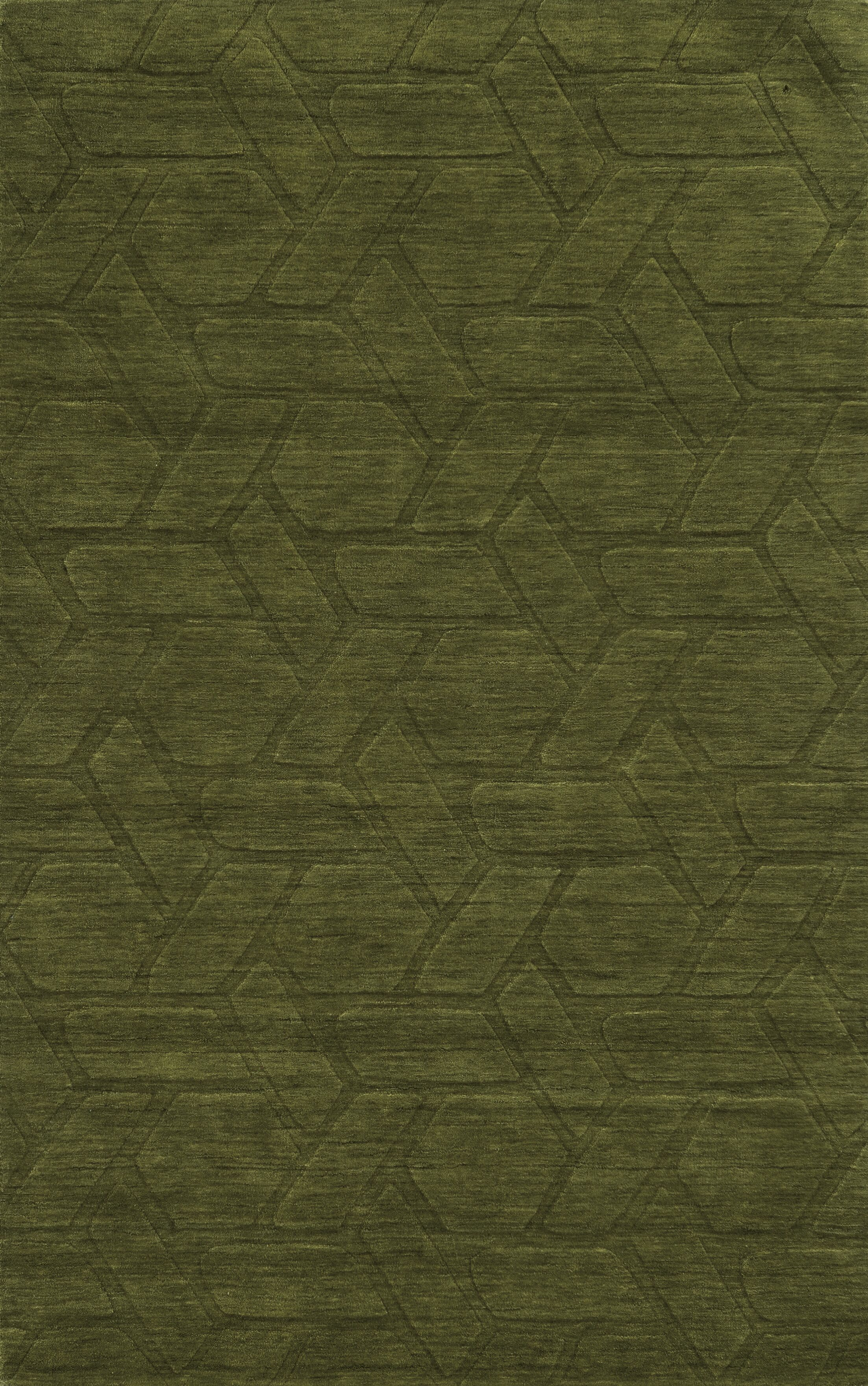 Trieste Hand-Loomed Green Area Rug Rug Size: Rectangle 9' x 12'