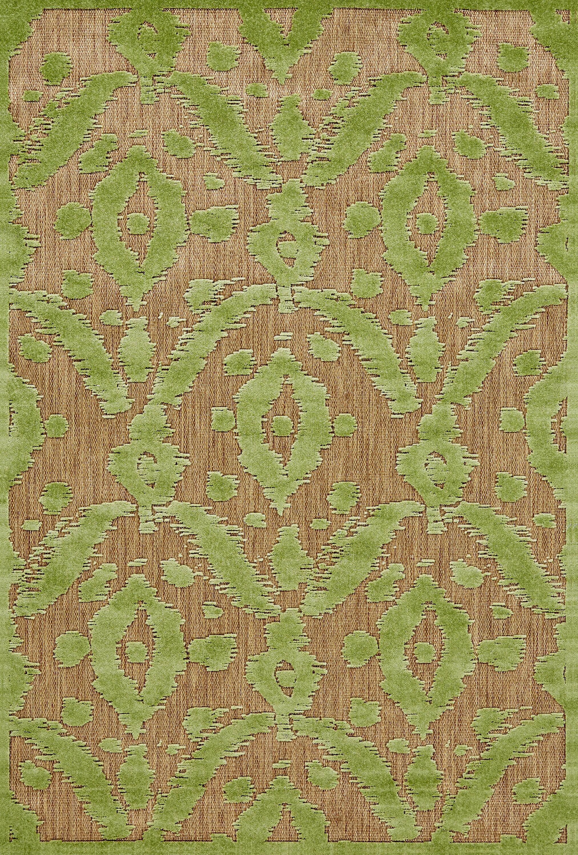 Monroe Green Indoor/Outdoor Area Rug Rug Size: Rectangle 7'6