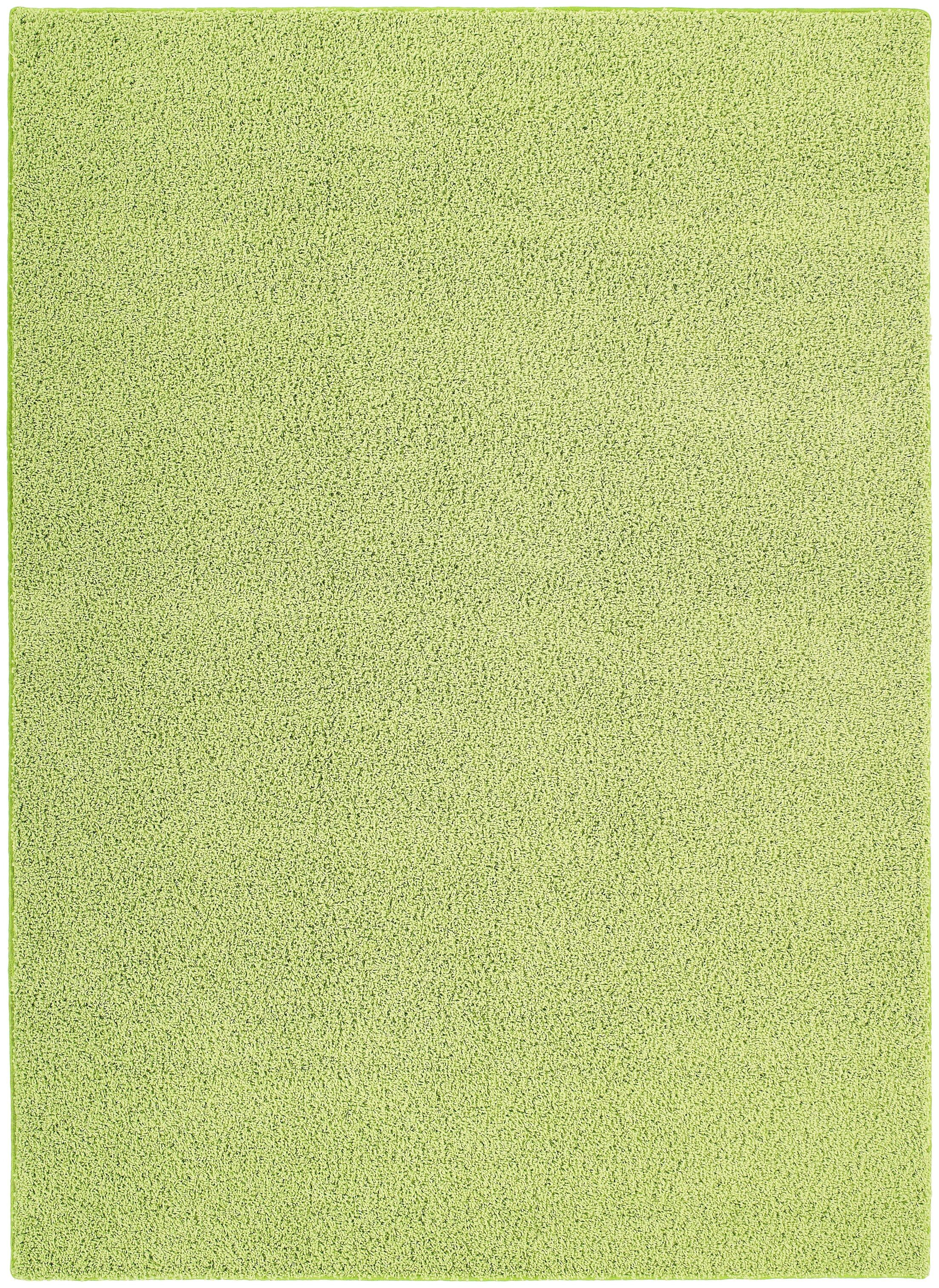 Behr Green Area Rug Rug Size: 4' x 6'