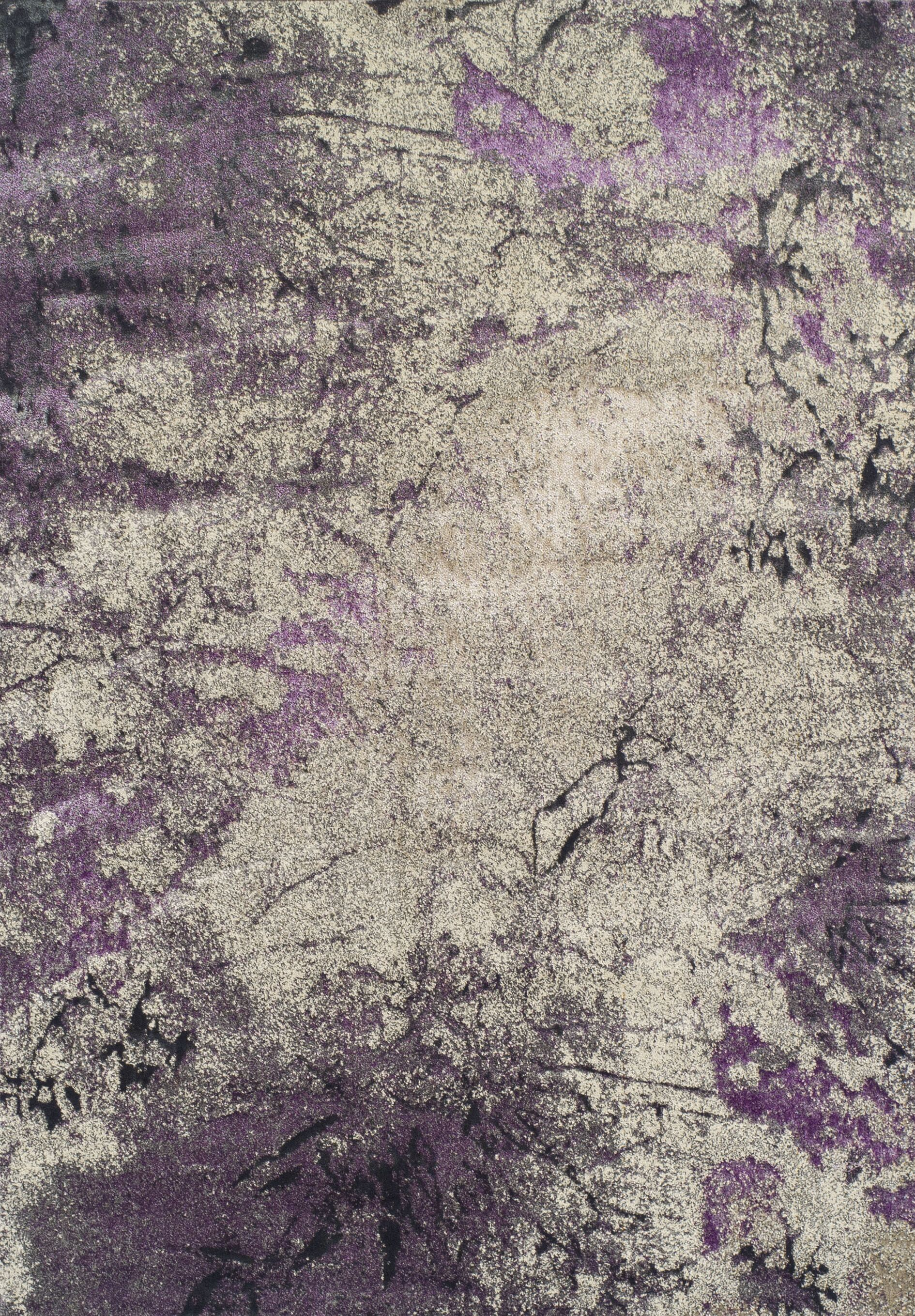 Allegra Orchid Area Rug Rug Size: Rectangle 3'3