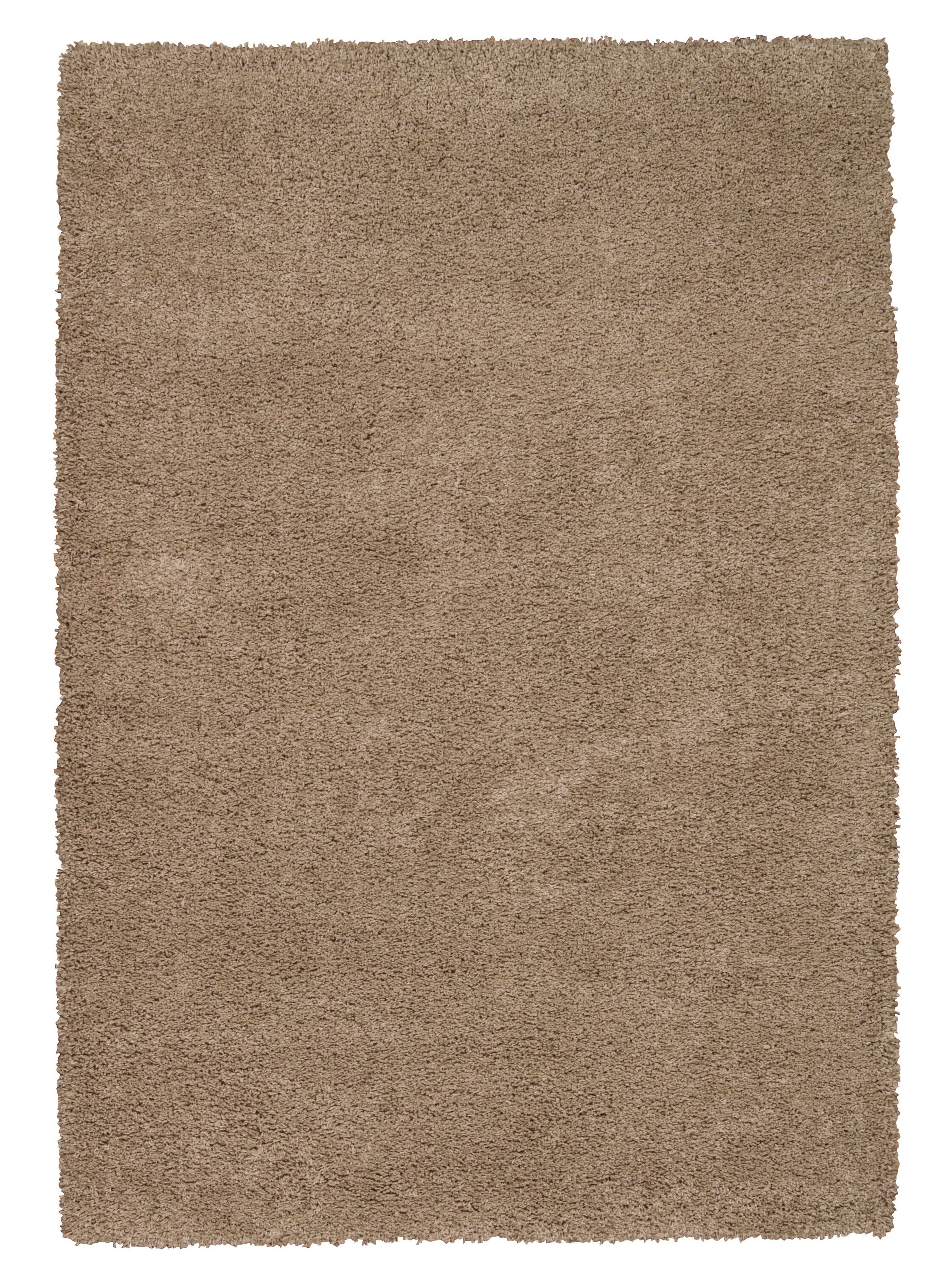 Shelley Oyster Area Rug Rug Size: Rectangle 7'10