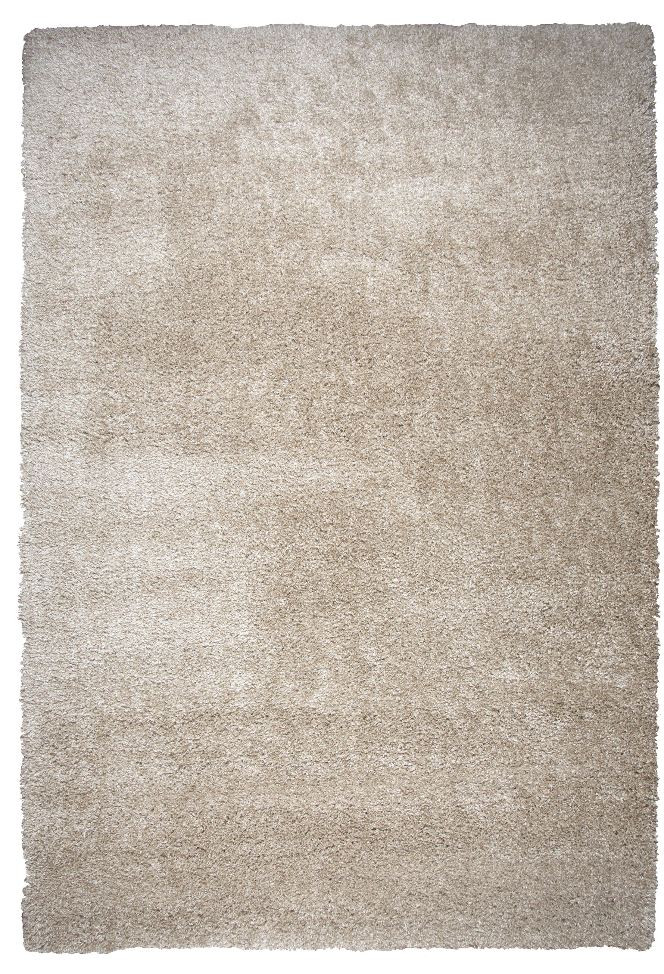 Thalia Beige Shag Area Rug Rug Size: Rectangle 5'3