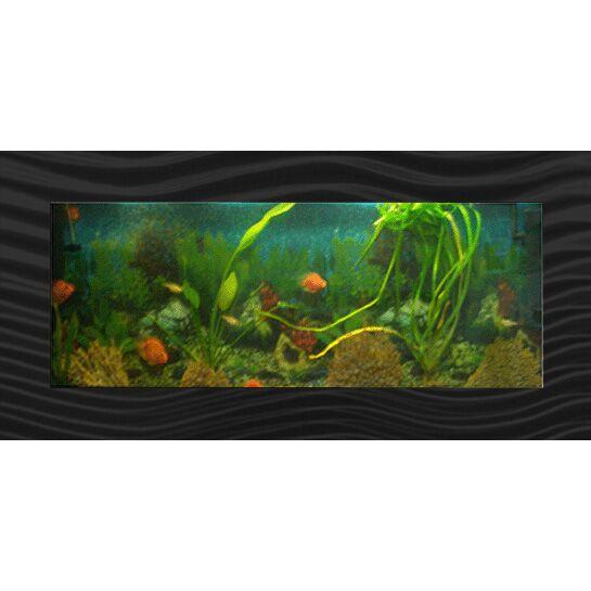 Aussie 21 Gallon Aquarium Tank