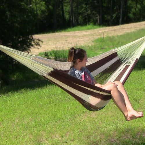 Hutchinson Double Tree Hammock Color: Brown / Natural