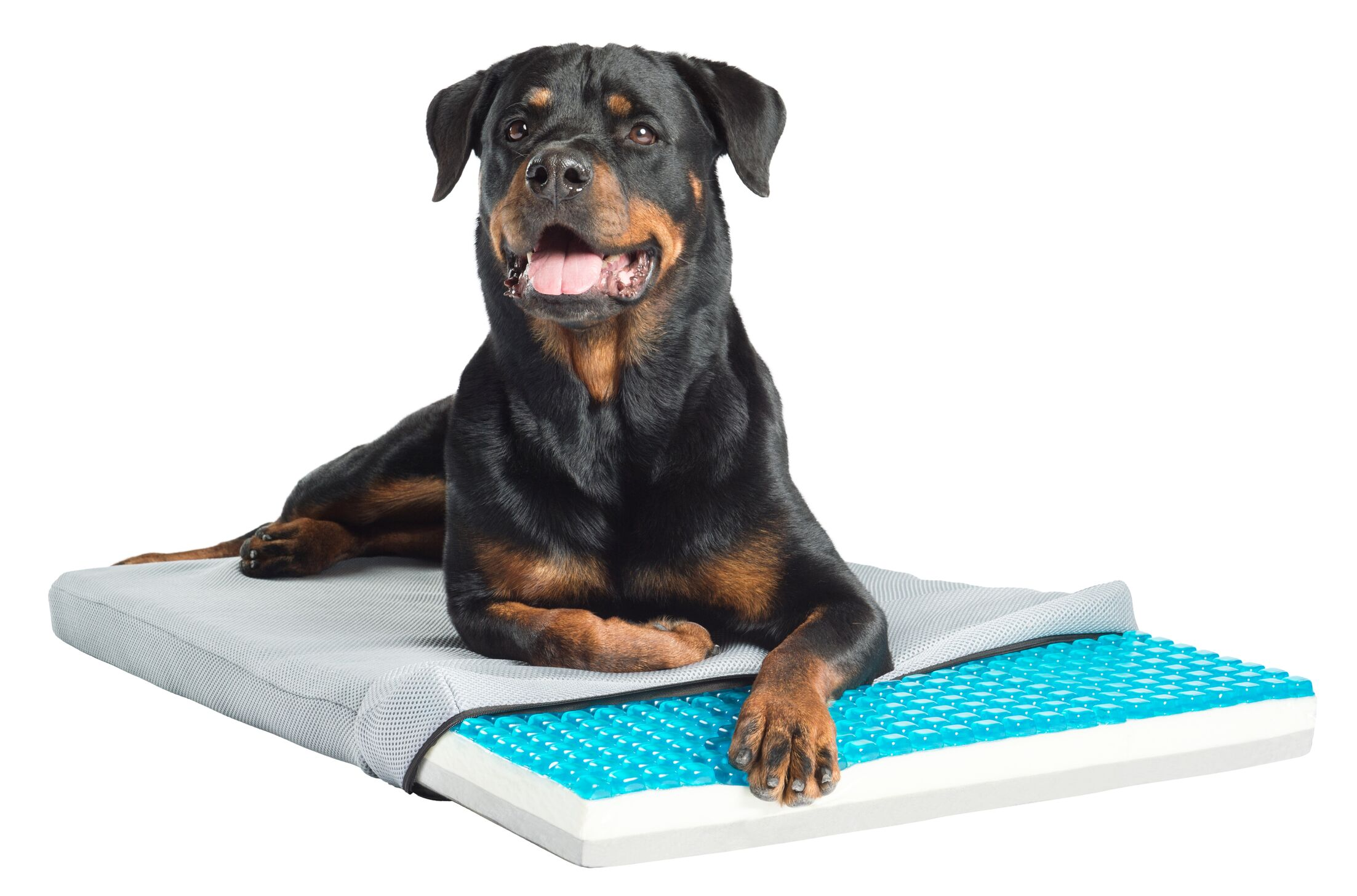 Loudon TheraCool Gel Cell Cooling Pad with Tri Core Charcoal-Infused Memory Foam