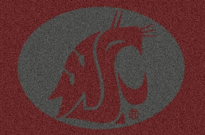 Collegiate Washington State University Doormat Mat Size: Rectangle 5'4