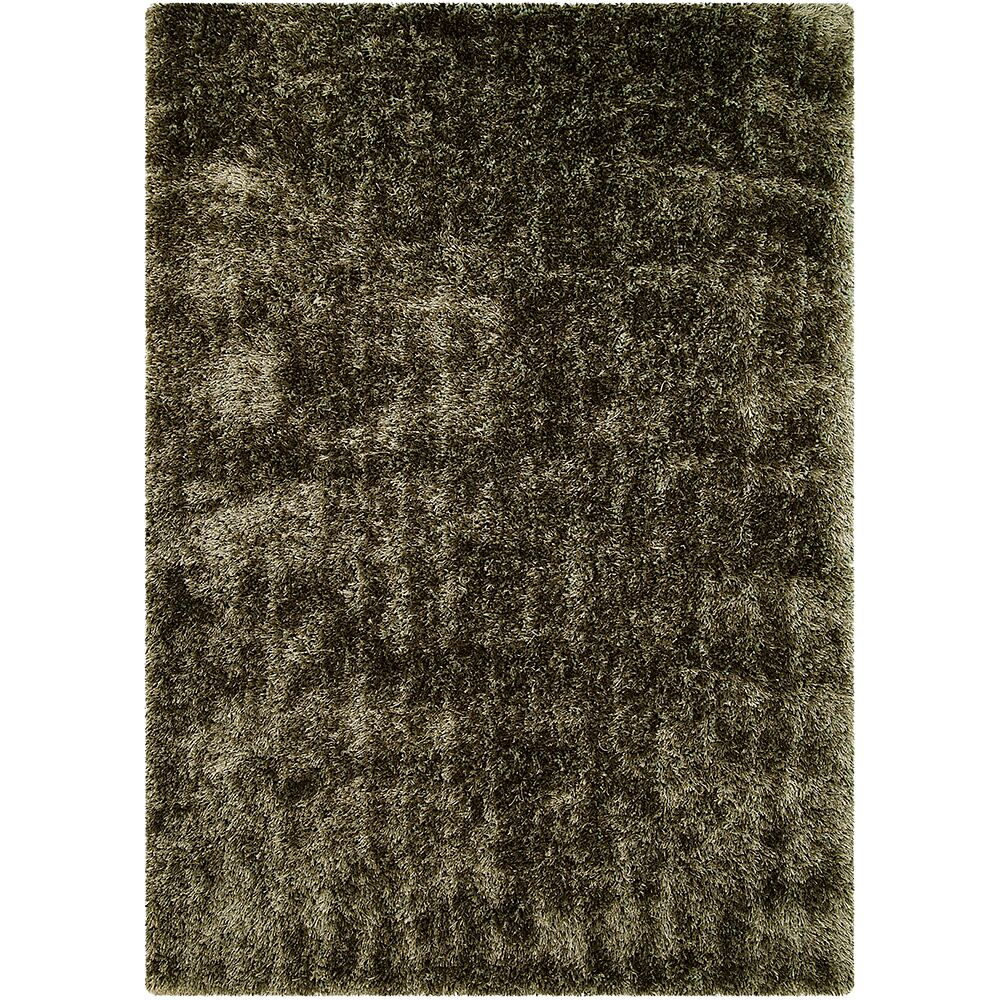Green Area Rug Rug Size: Rectangle 4'11