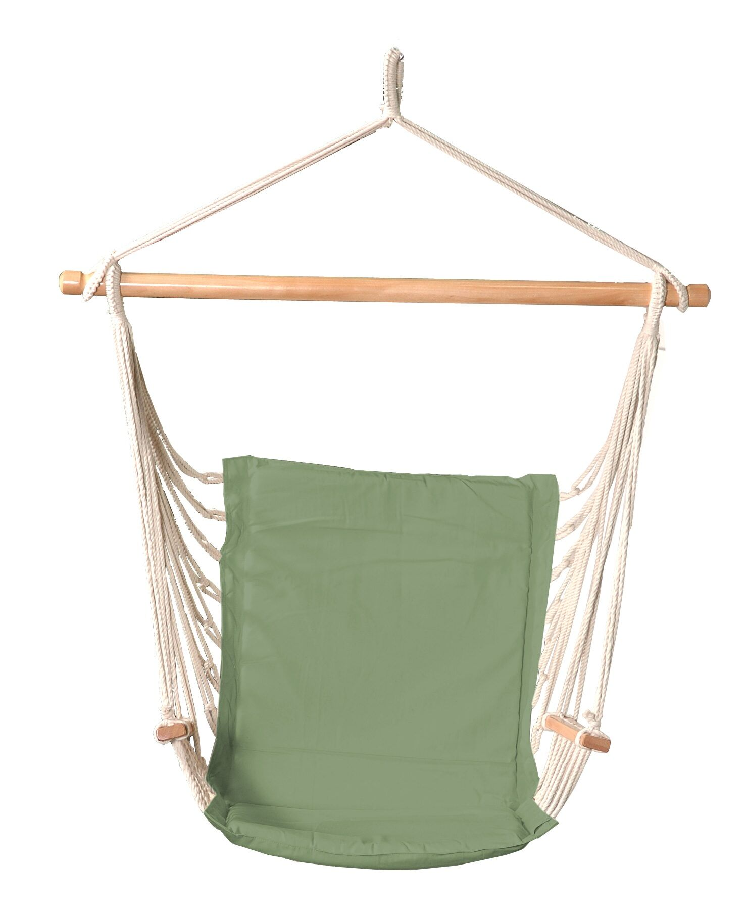 Goins Polyester Fabric Chair Hammock Color: Green