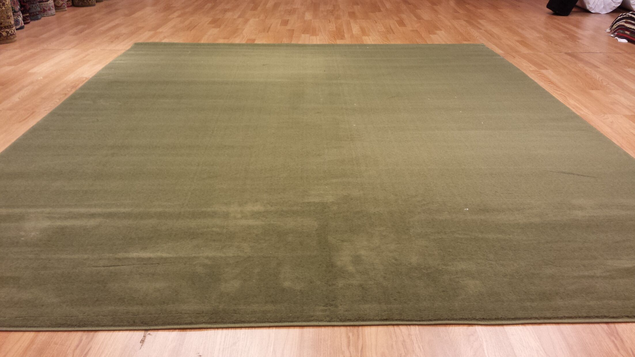 Hand-Carved Green Area Rug Rug Size: Rectangle 4' x 6'
