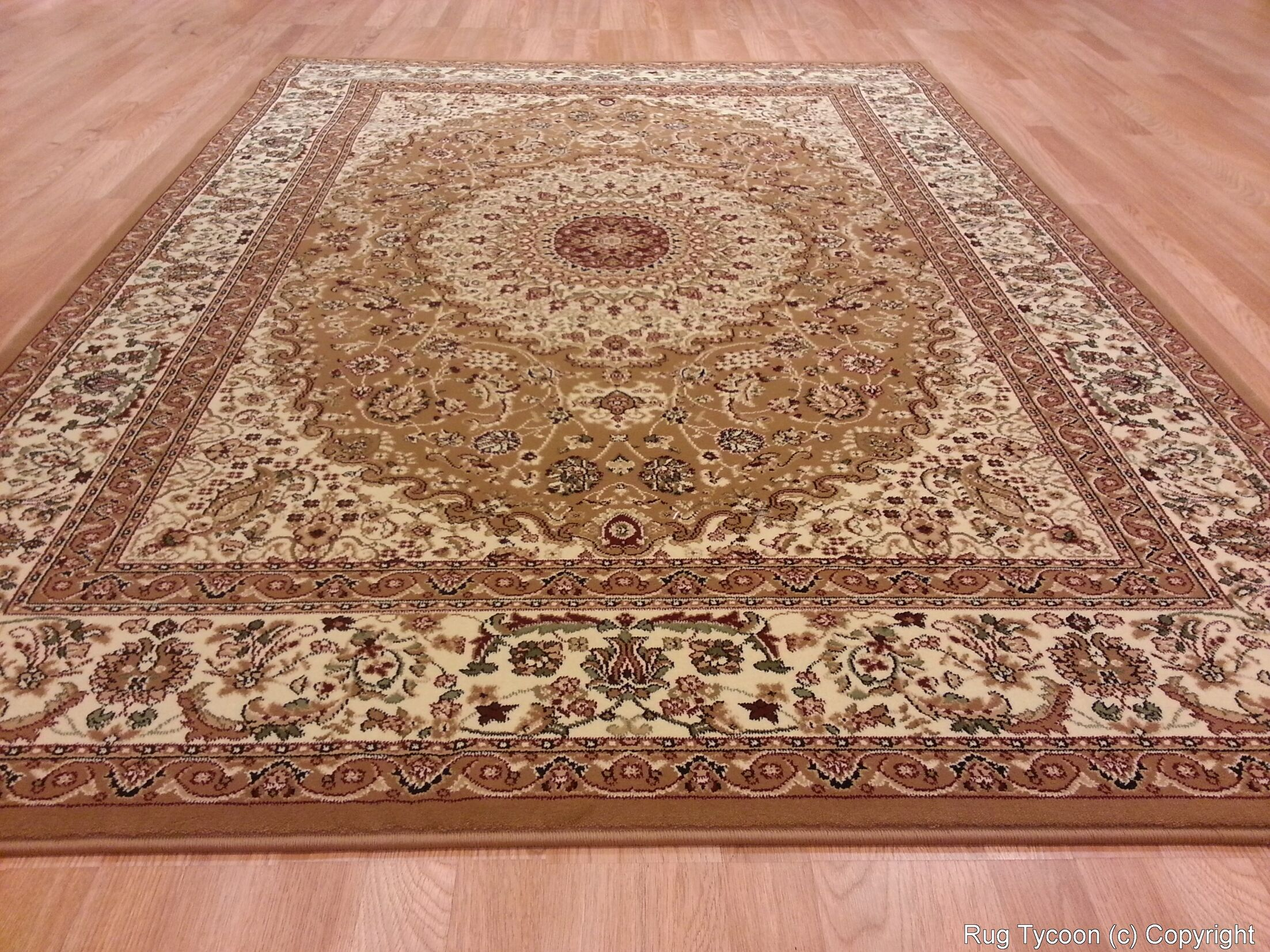 Gold Area Rug Rug Size: Rectangle 7'11