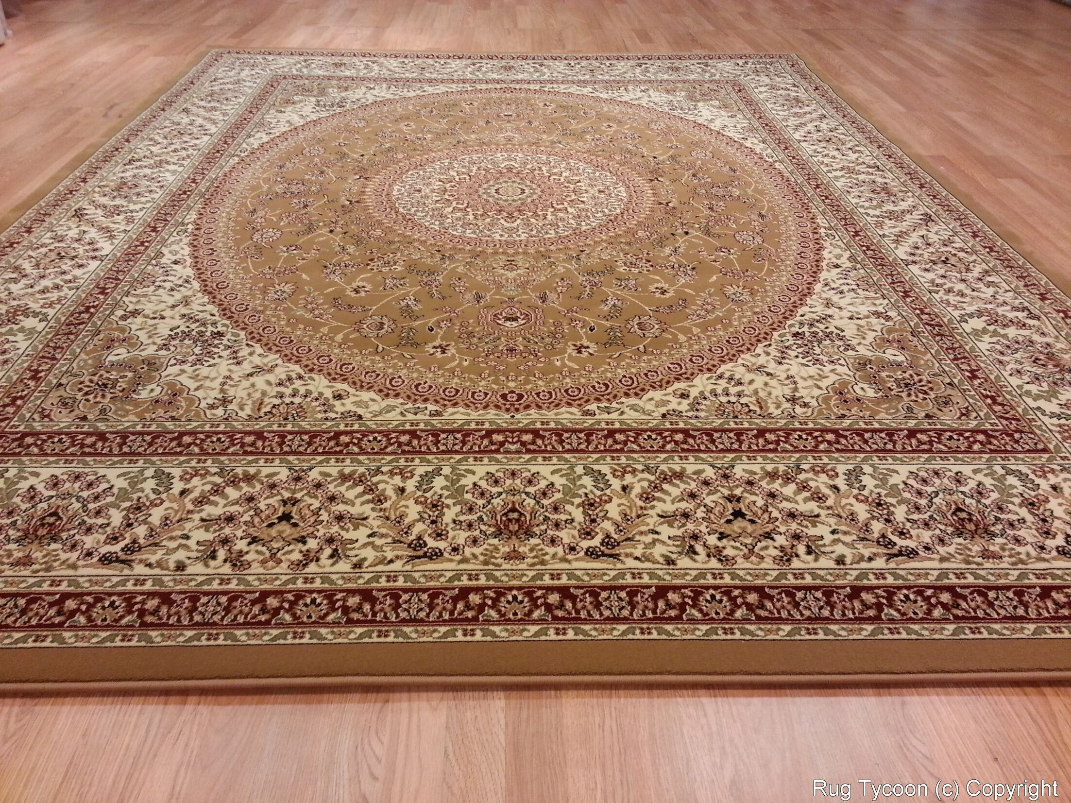 Gold Area Rug Rug Size: Rectangle 10' x 13'