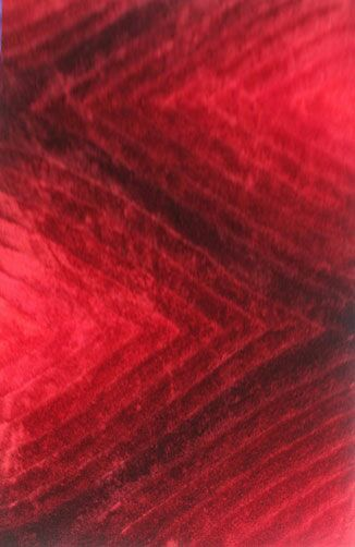 Priston Red Area Rug Rug Size: 3' x 5'