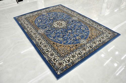 Blue Area Rug Rug Size: Rectangle 7'11