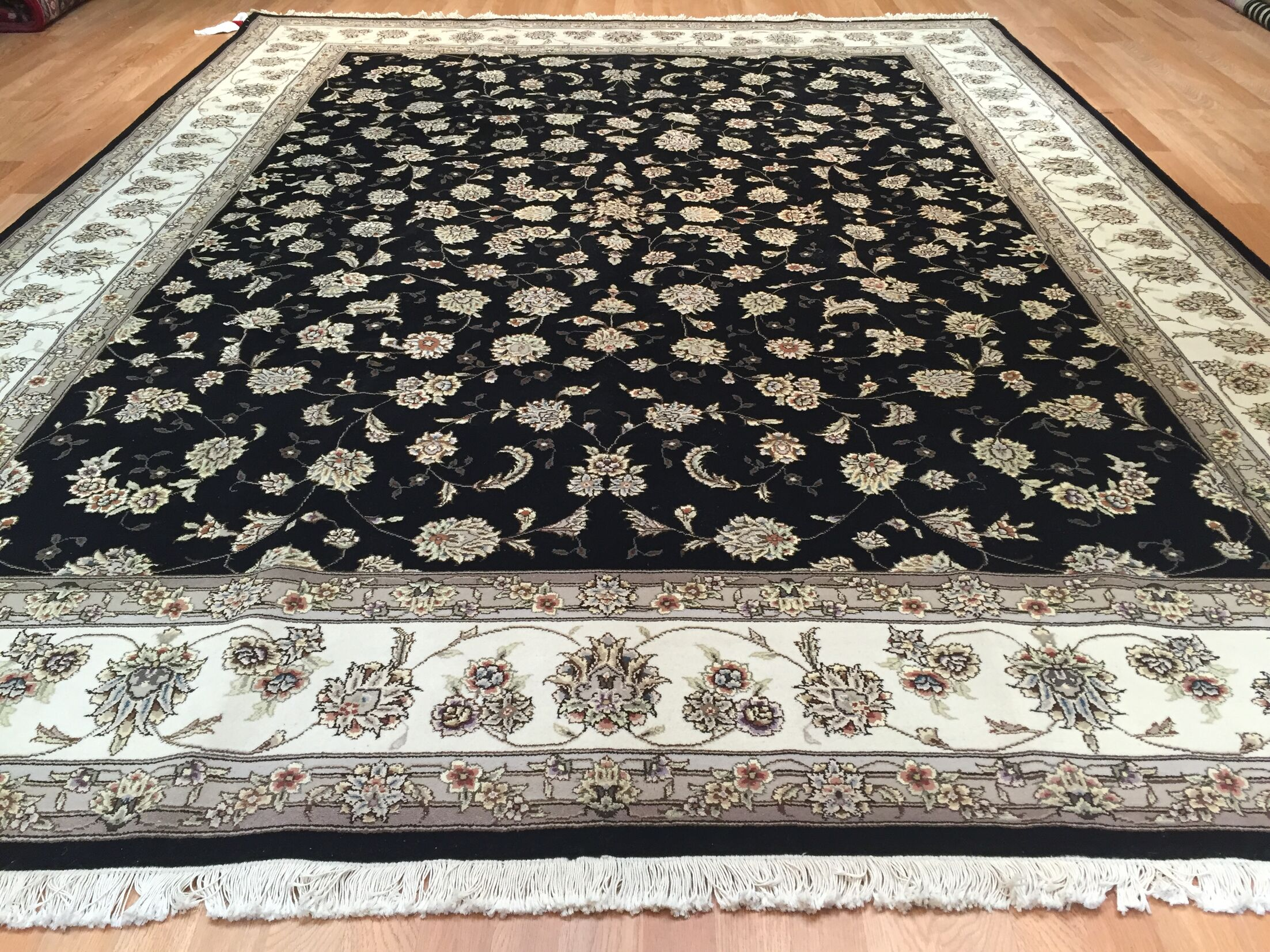Drummaul Hand-Knotted Black/Beige Area Rug