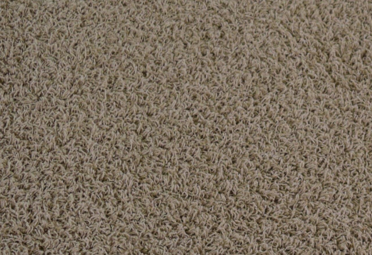 Alsace Taupe Area Rug Rug Size: Rectangle 10' x 13'