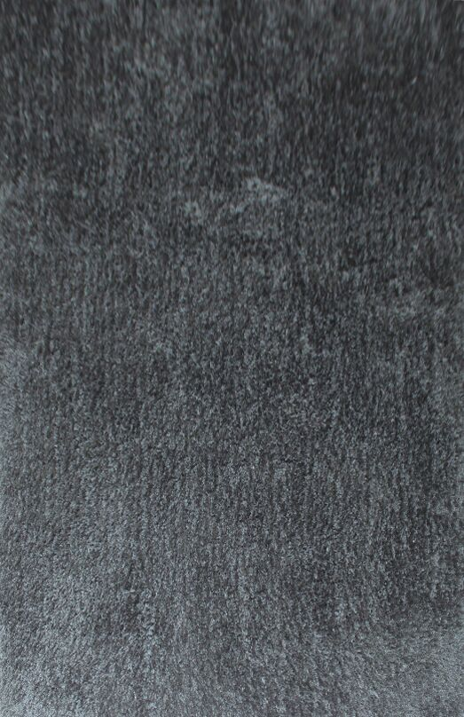 Dogwood Dark Gray Area Rug Rug Size: 5'3