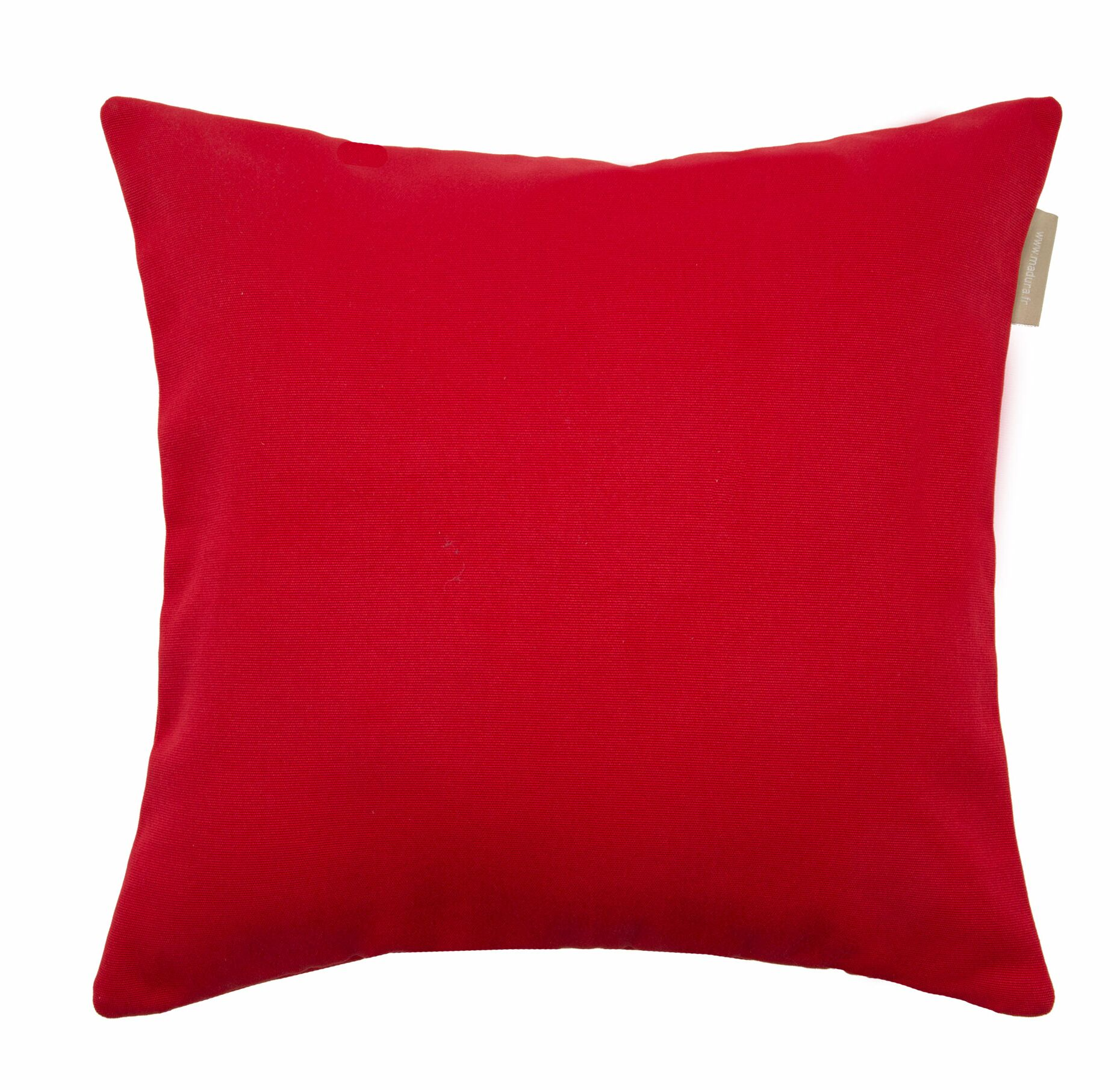 Indoor/Outdoor Pillow Cover Size: 23.5