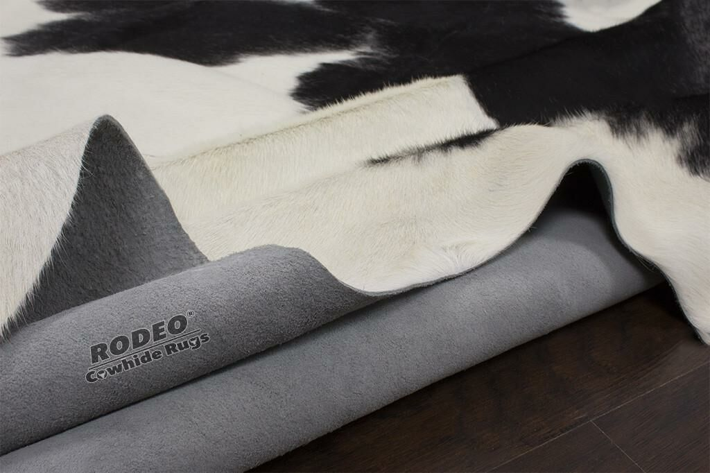 Black/White Area Rug Rug Size: 6' x 8'