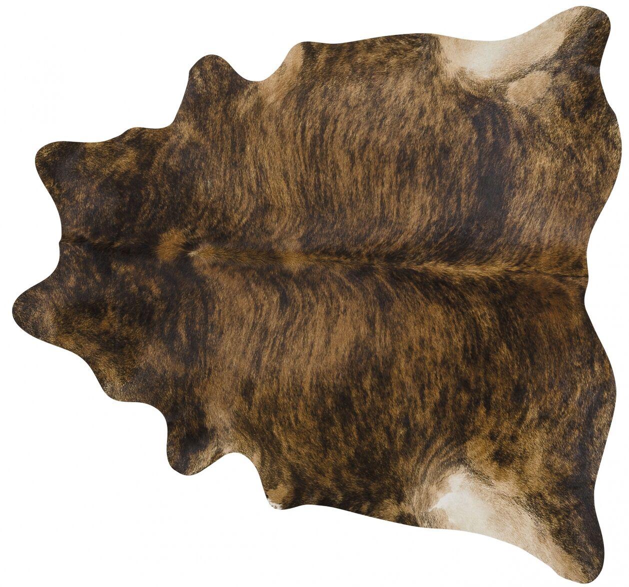 Handmade Brown Area Rug Rug Size: 5'6