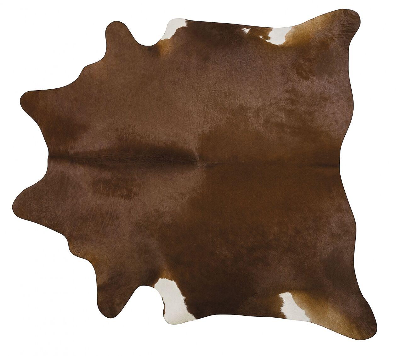 Handmade Brown Area Rug Rug Size: 7' x 7'6