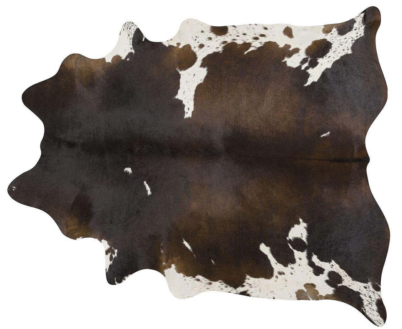 Handmade Brown/White Area Rug Rug Size: 5'6