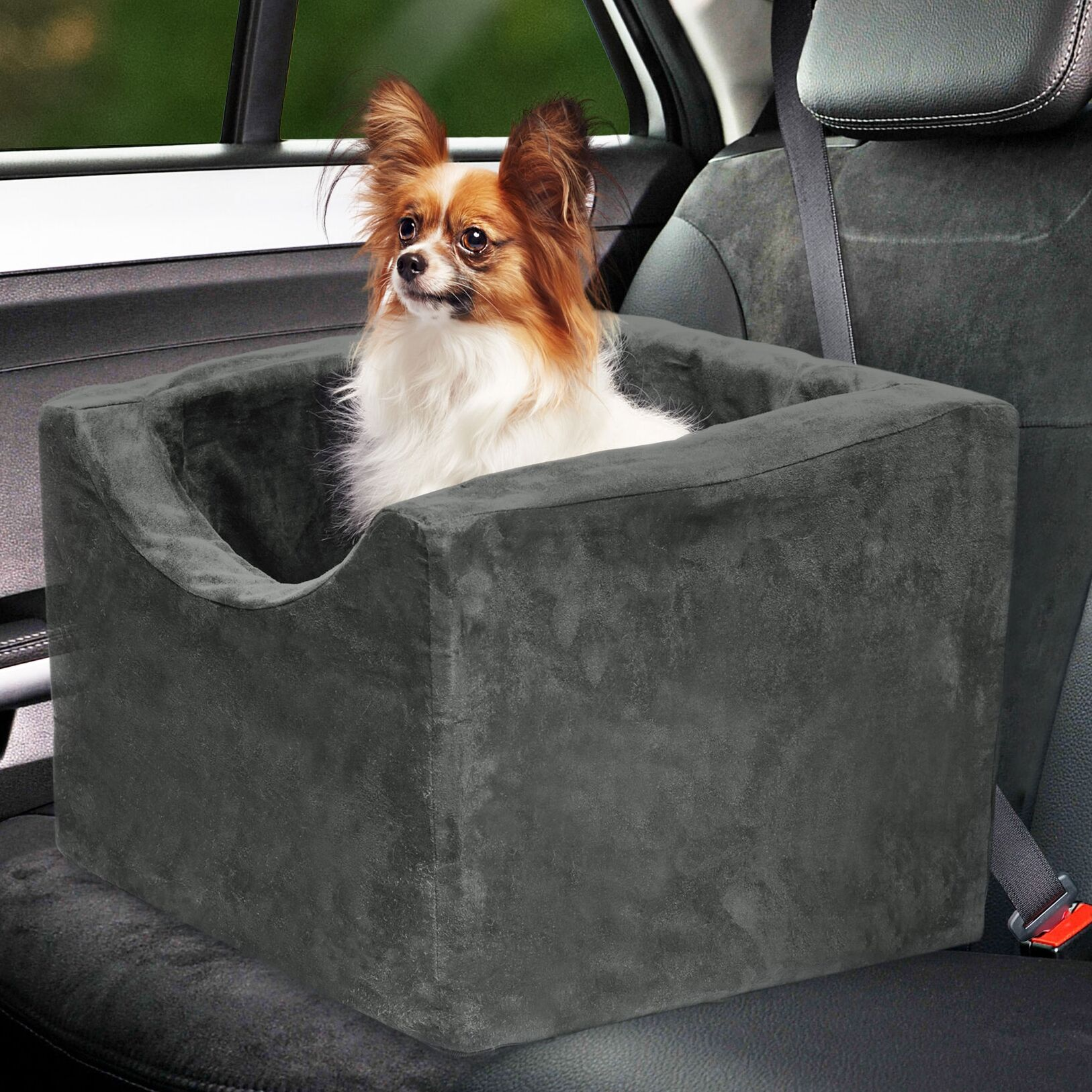 Dormer Booster Seat Pet Carrier Color: Gray