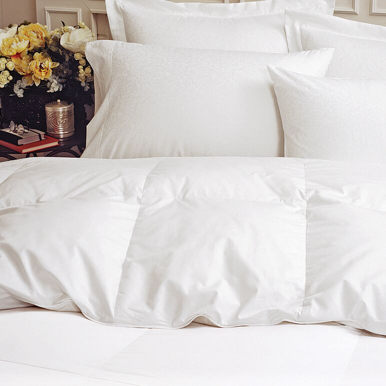 Lightweight Down Comforter Size: Queen