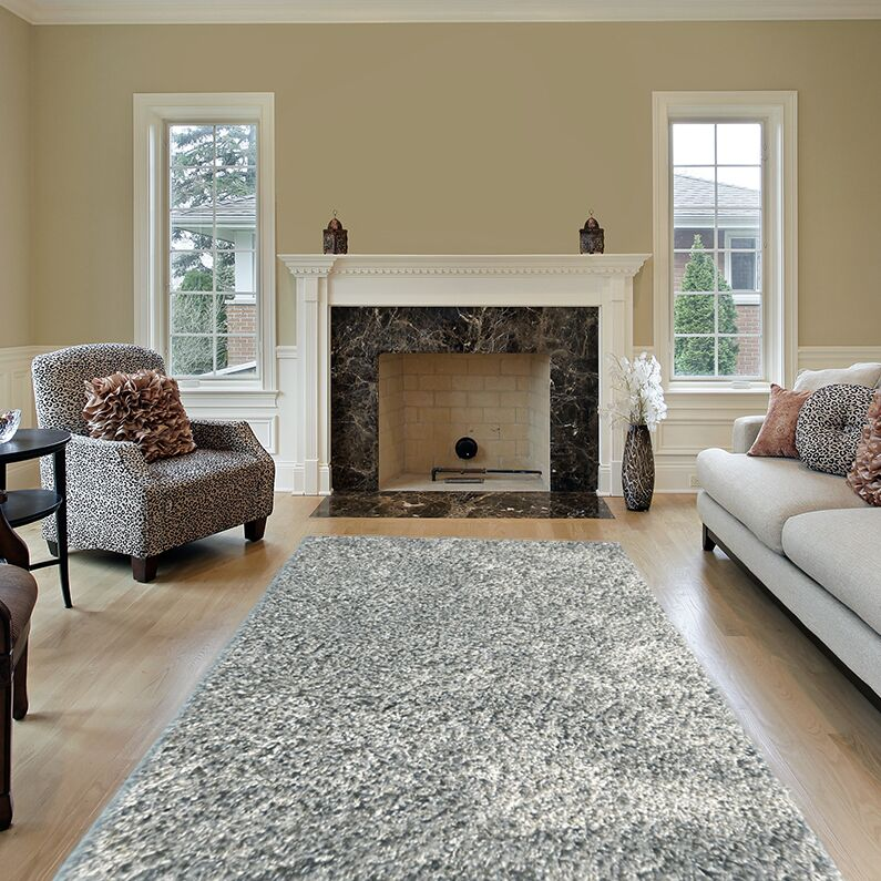 Colorville Silver Area Rug Rug Size: Runner 2'8