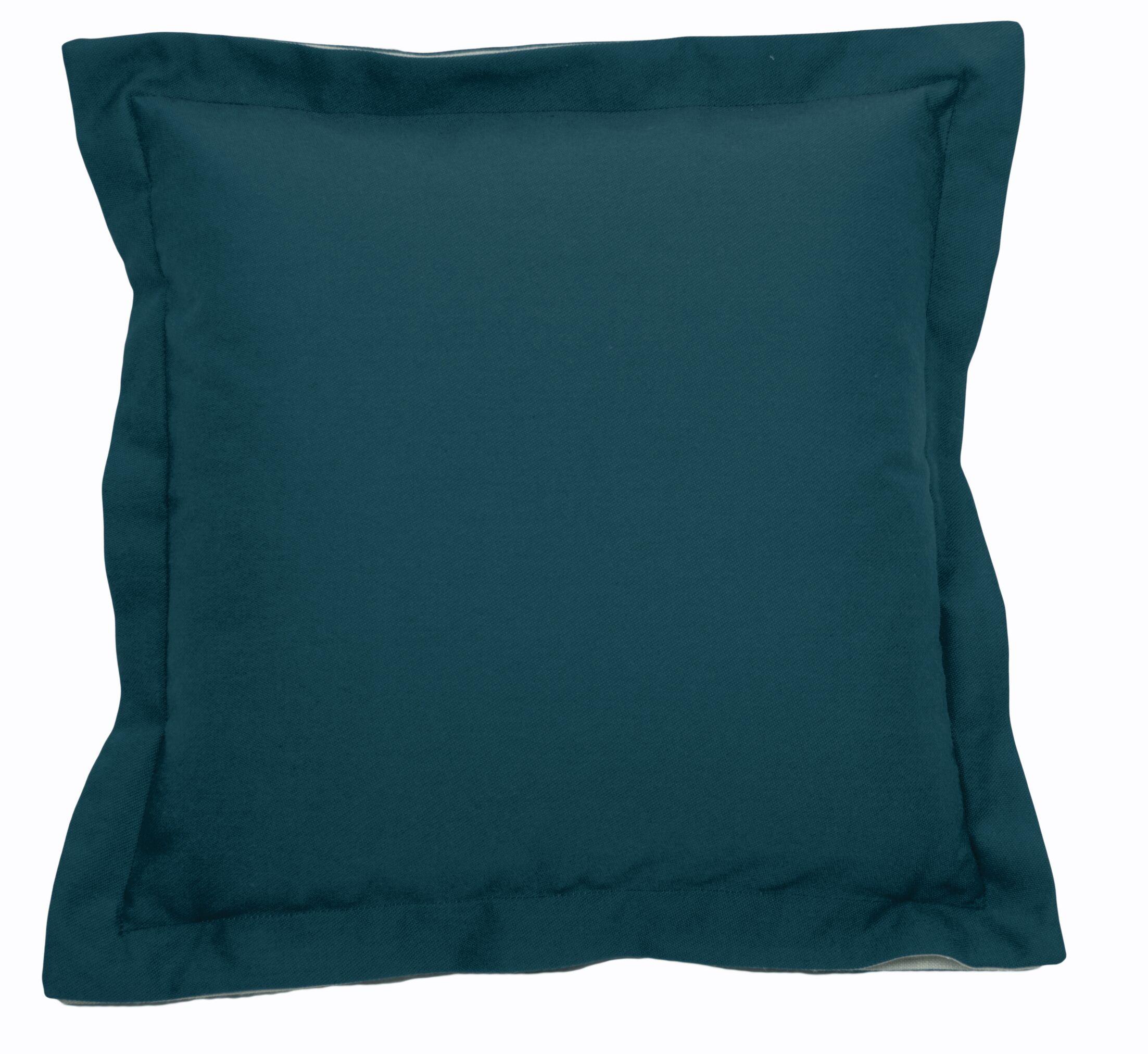 Indoor/Outdoor Throw Pillow (Set of 2) Size: 20