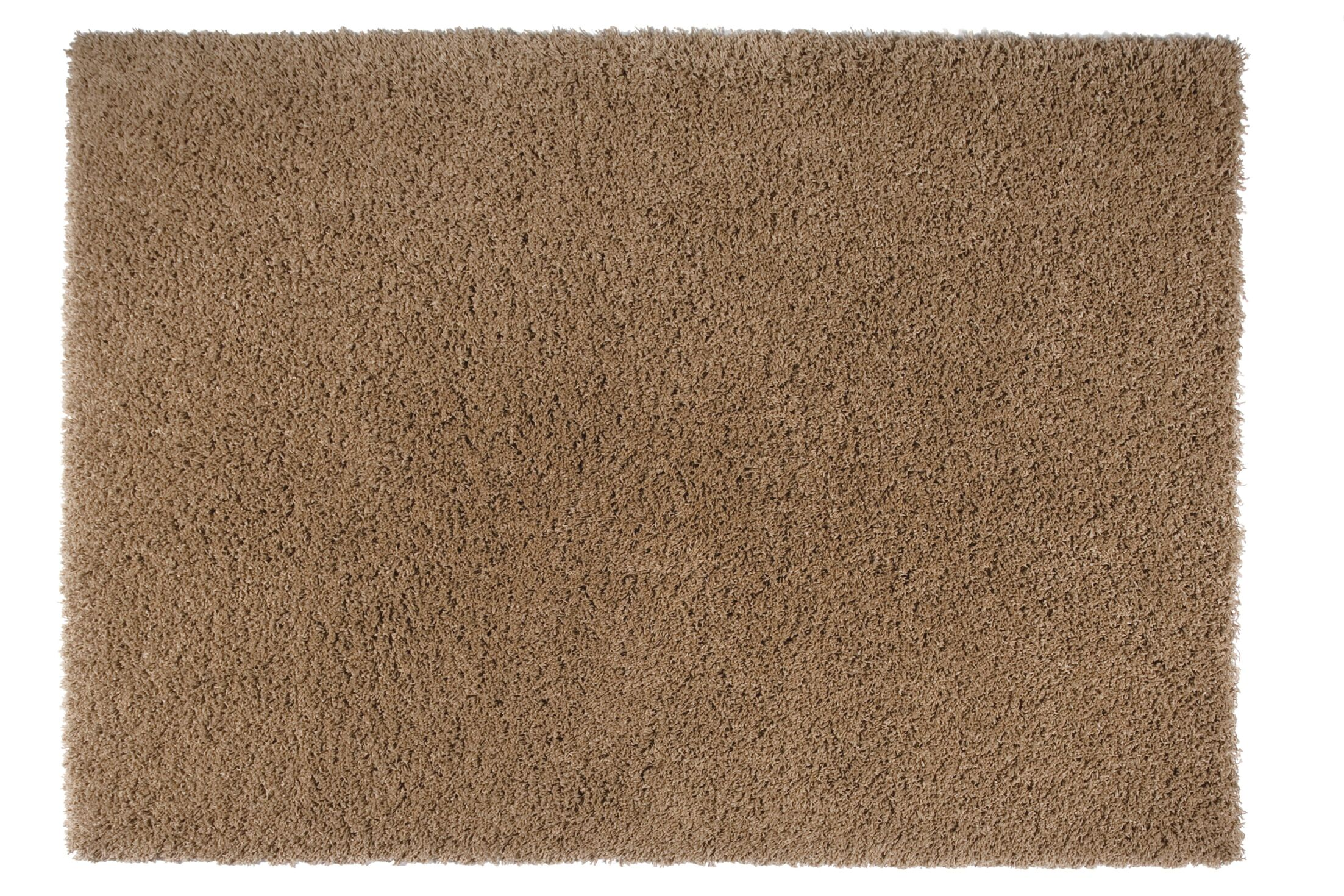 Loft Brown Area Rug Rug Size: Rectangle 6'7