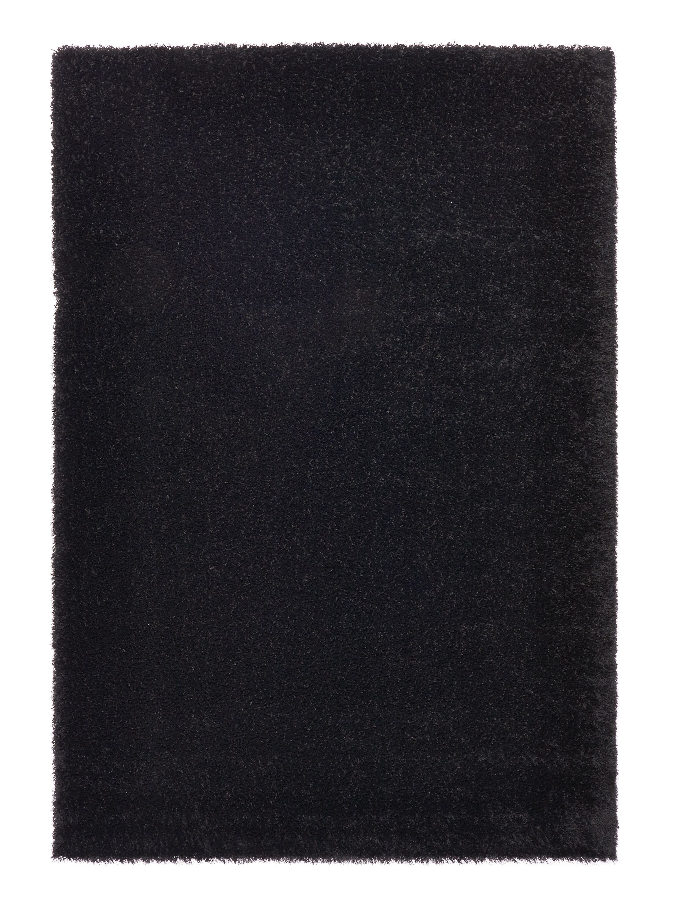 Ocean Black Area Rug Rug Size: 5'3