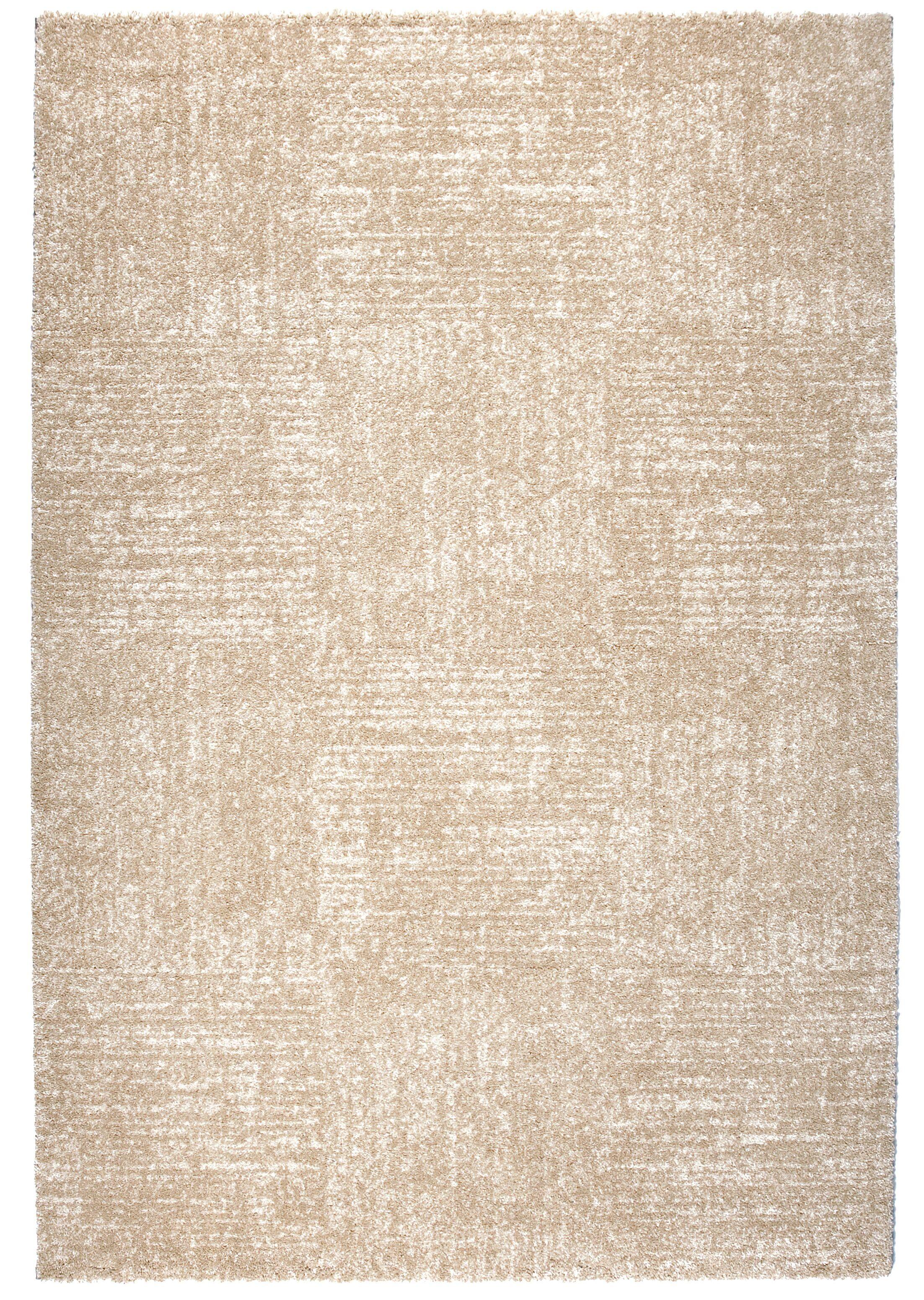 Granite Beige Area Rug Rug Size: 5'3