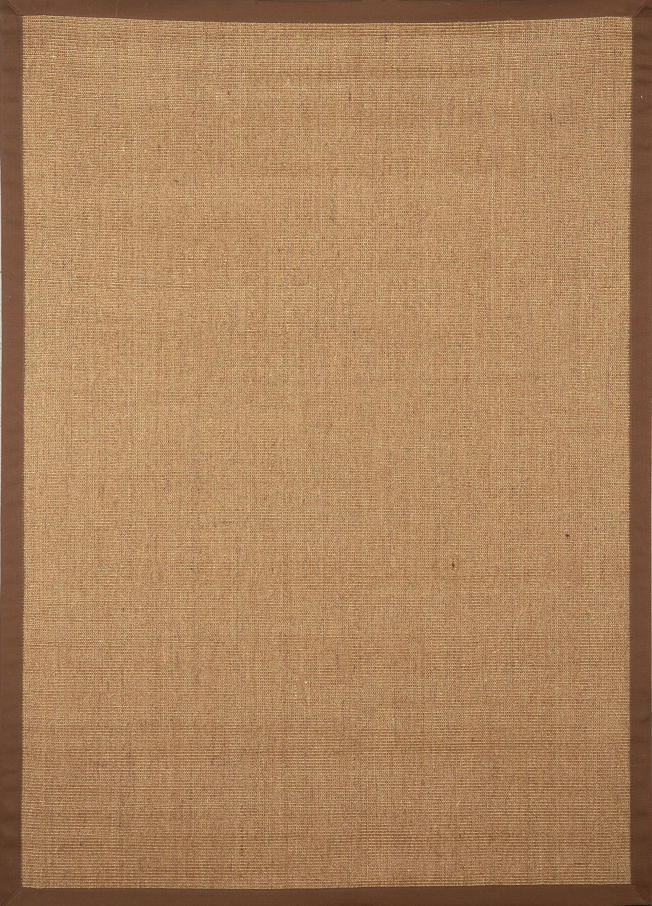 Cheyanne Brown Border Area Rug Rug Size: Rectangle 3' x 4'7