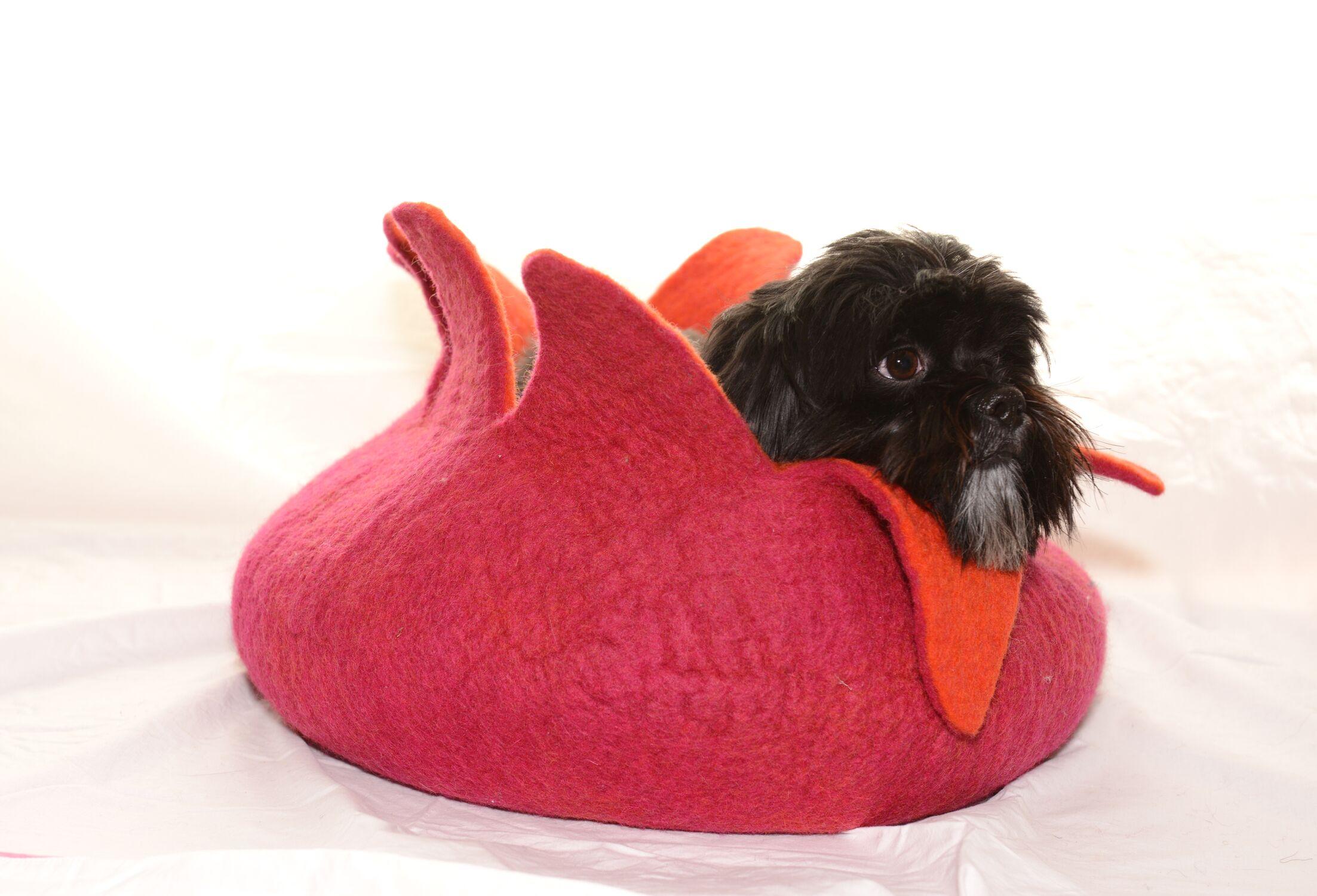 Pet Basket Color: Pink/Orange