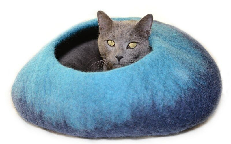 Pet Cave Color: Navy/Turquoise