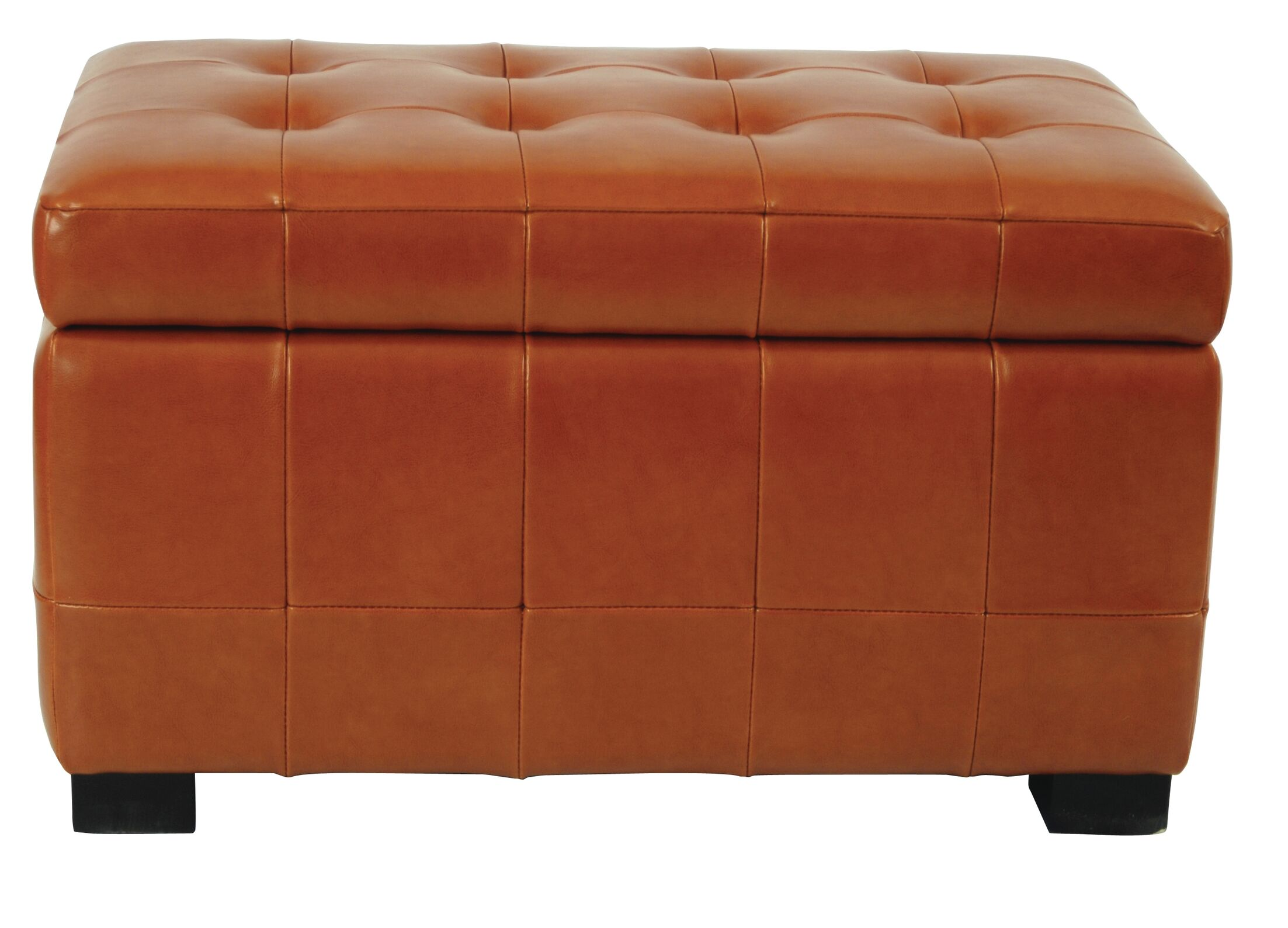Strickland Storage Ottoman Upholstery: Saddle