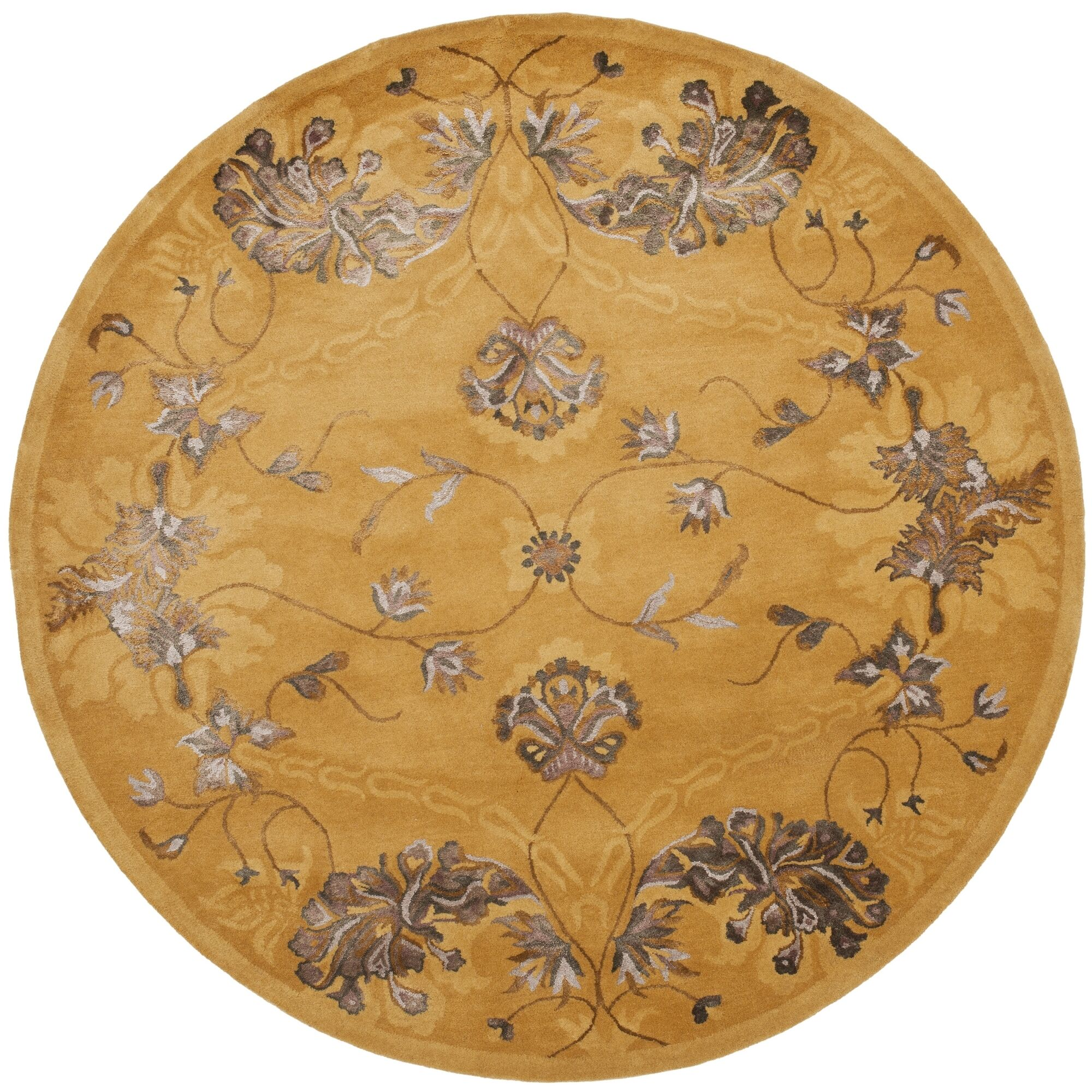 Silk Road Gold Area Rug Rug Size: Rectangle 7'6
