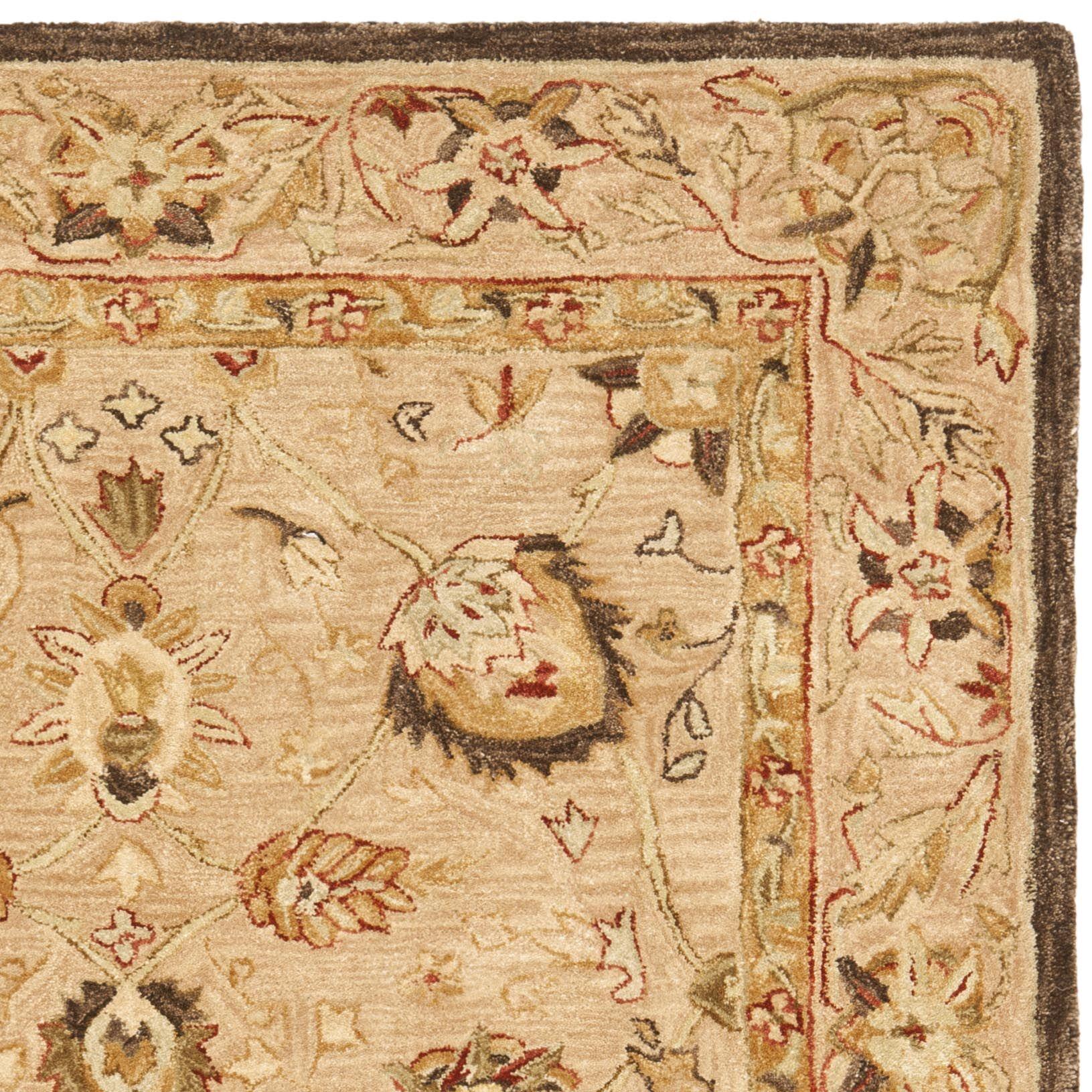 Anatolia Hand-Woven Wool Brown Area Rug Rug Size: Rectangle 9'6