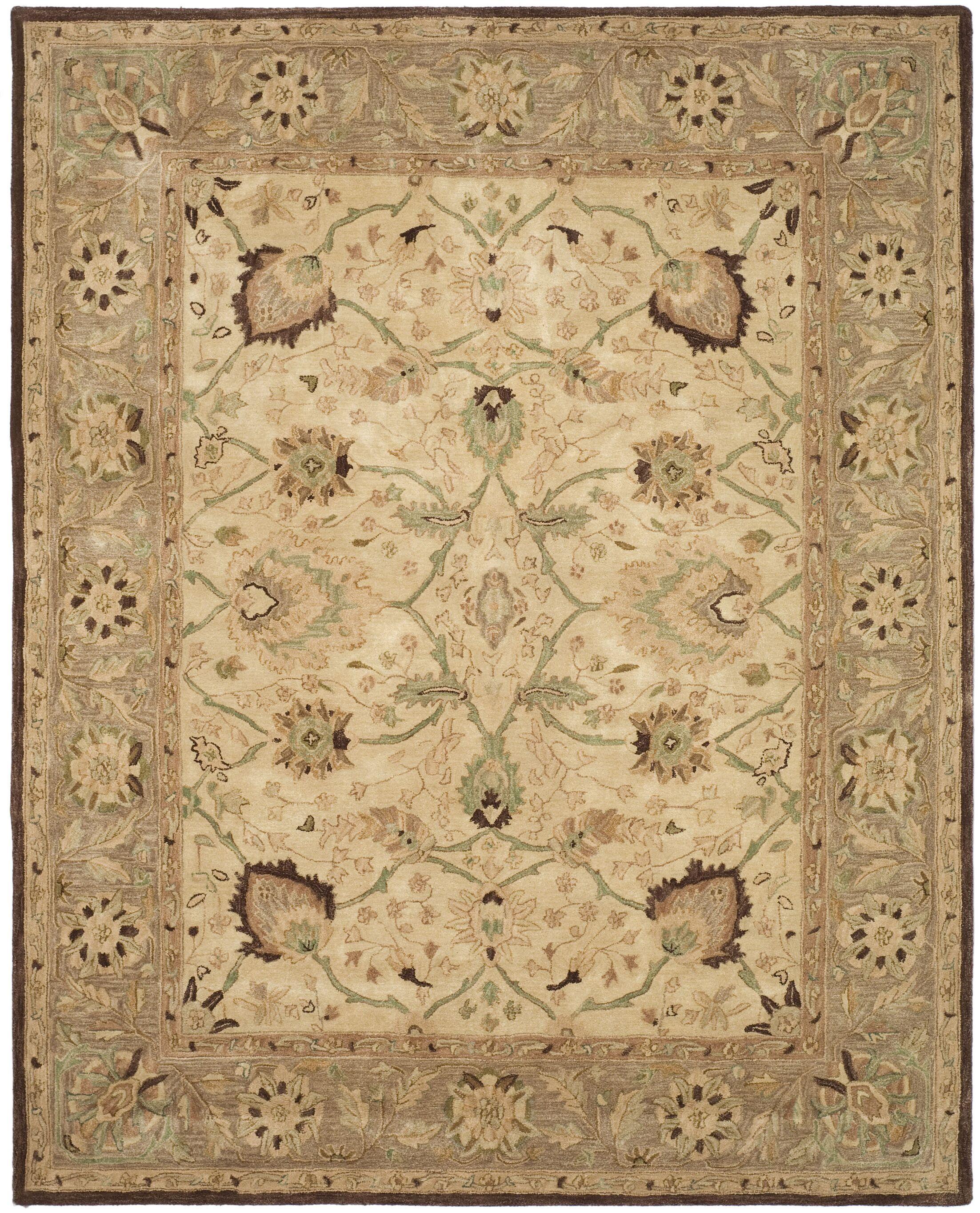 Anatolia Ivory/Brown Area Rug Rug Size: Rectangle 3' x 5'